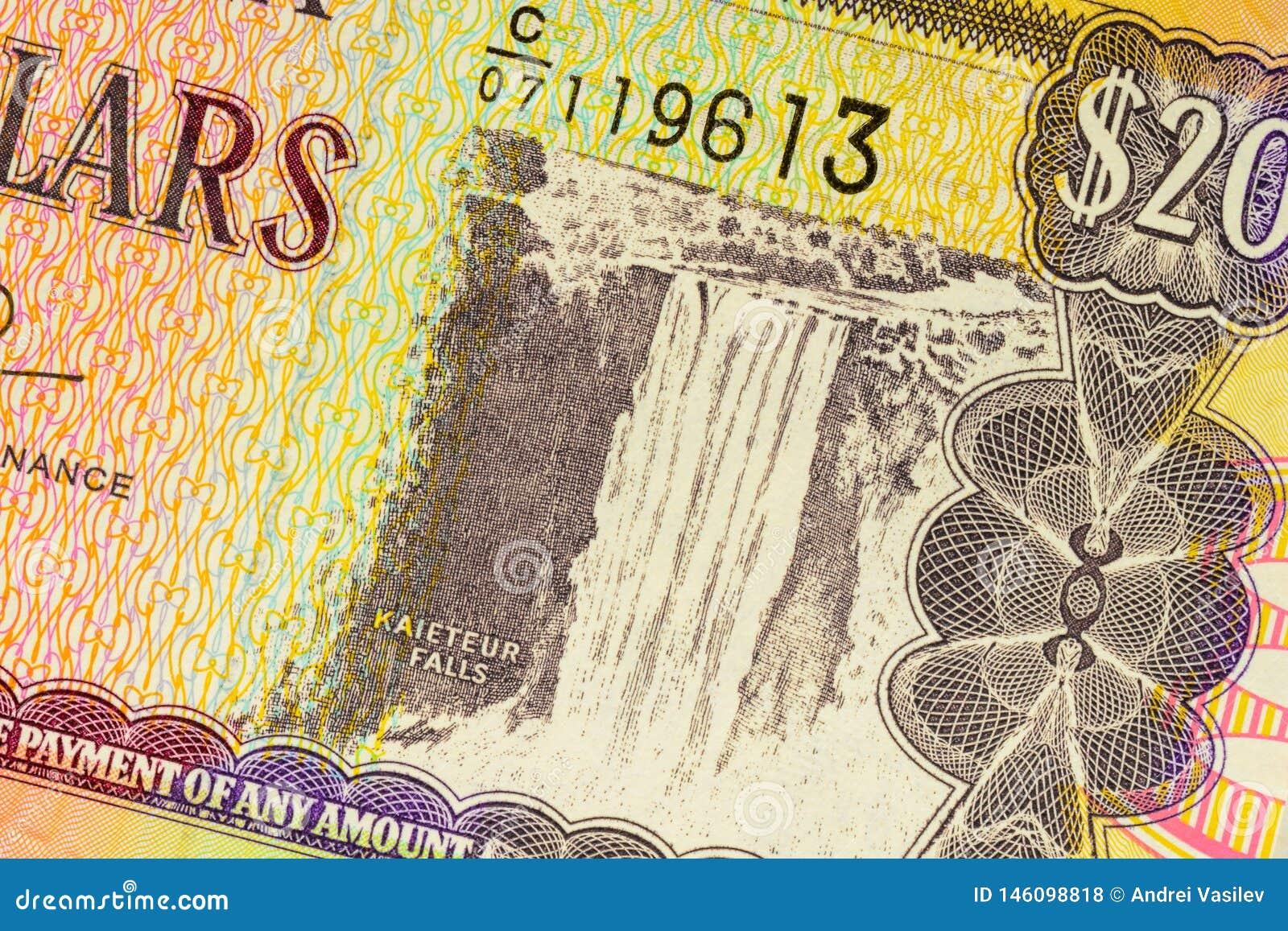 Parte de veinte dólares de Gayana de fondo del billete de banco Foto de alta resolución de la cuenta gayanian de la parte delante
