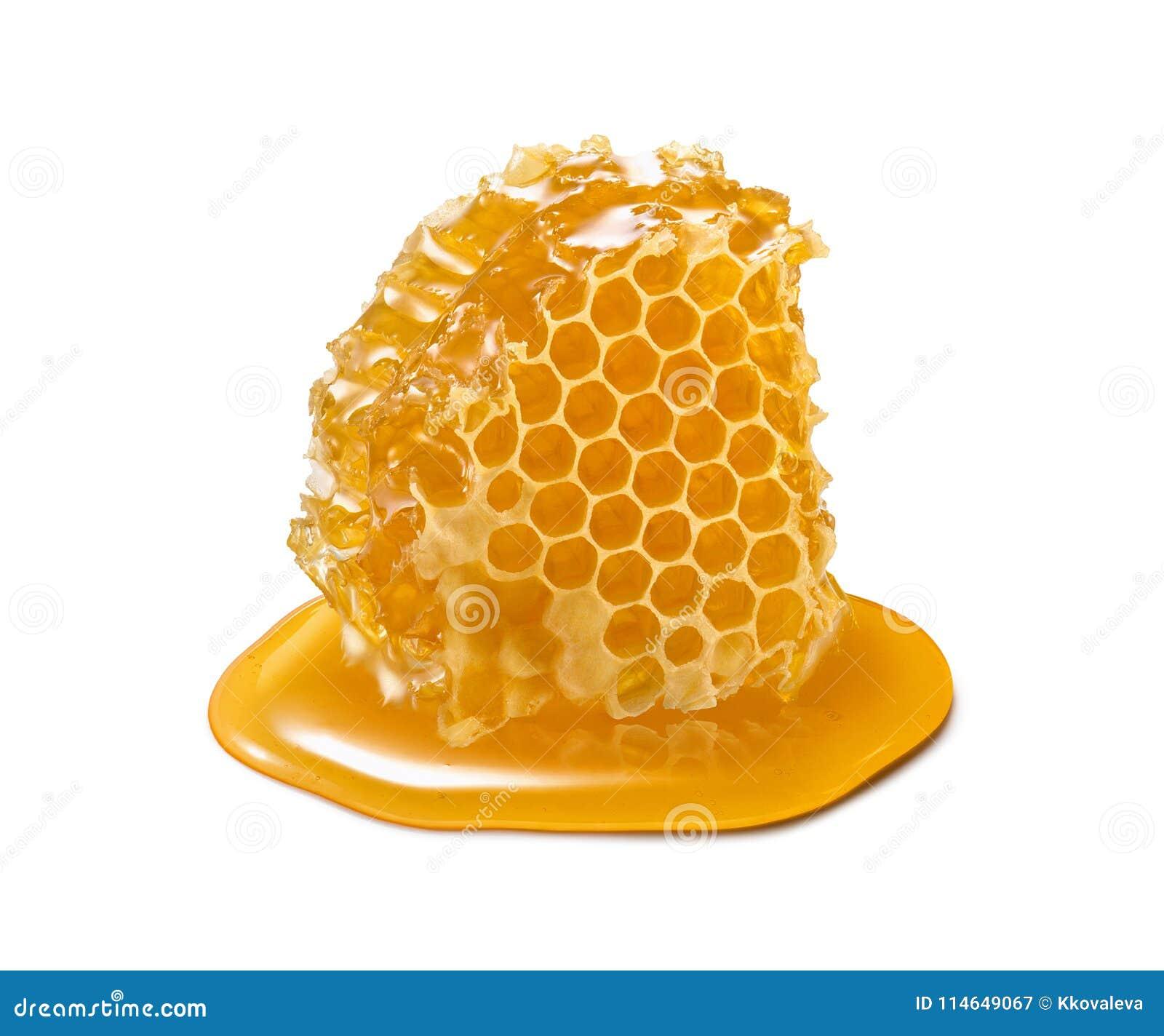 Parte do favo de mel Fatia do mel isolada no fundo branco