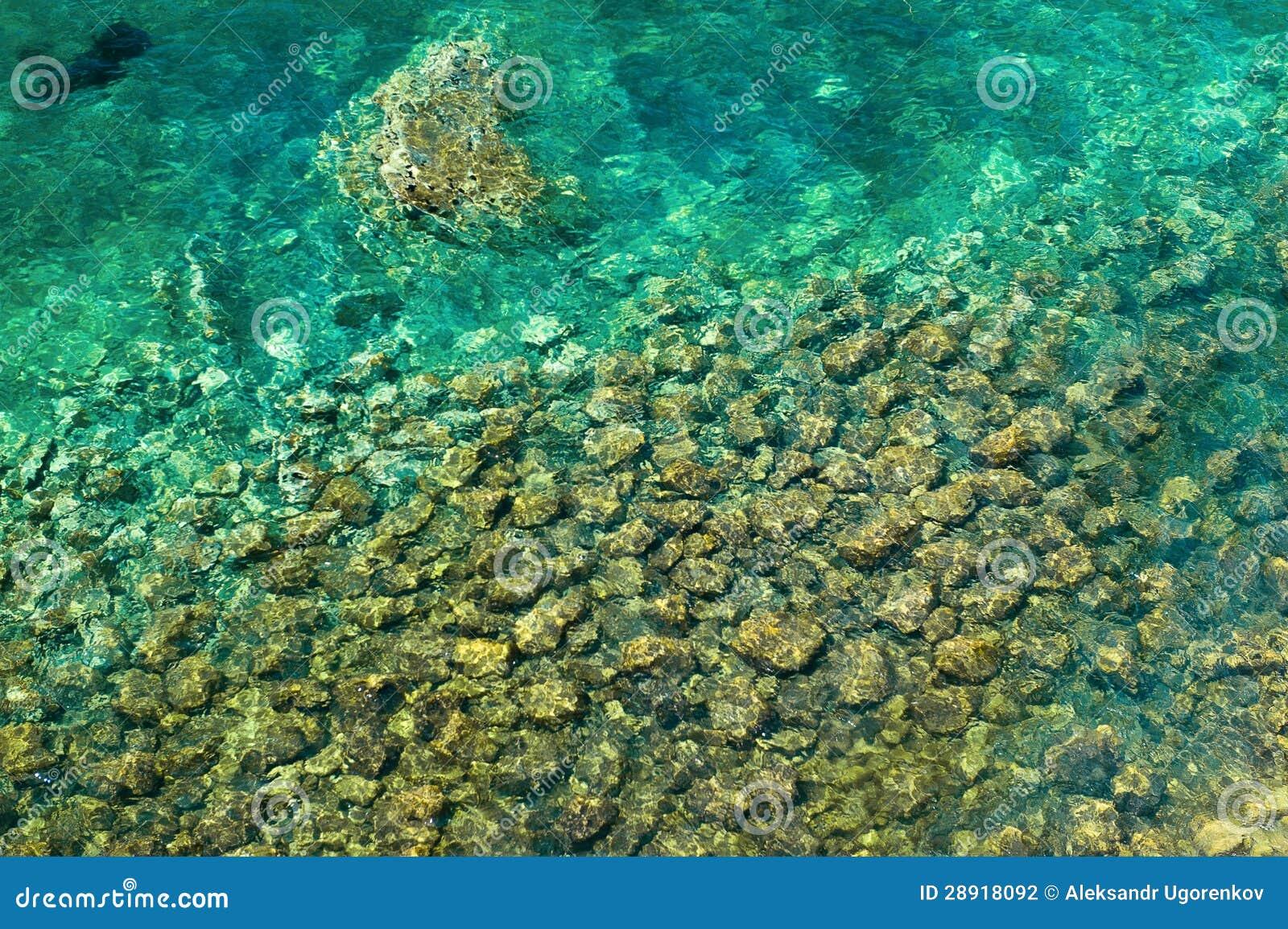 Parte inferior del mar de mar