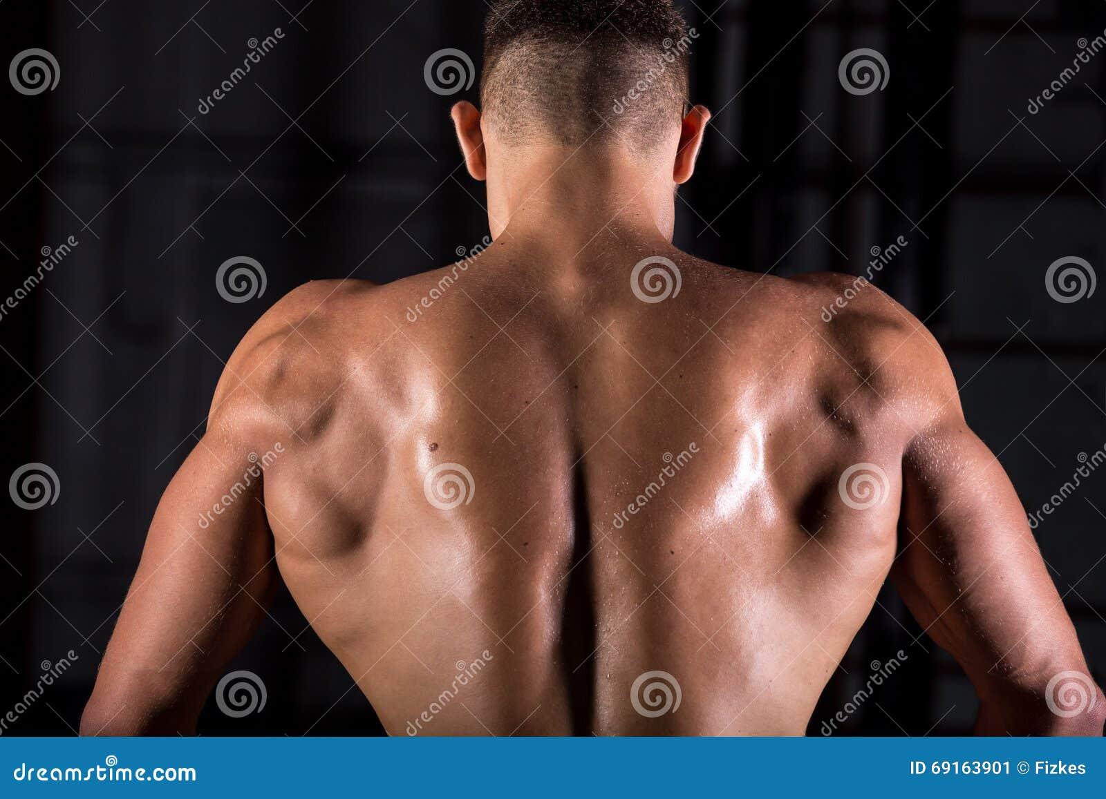 Parte posterior musculosa del individuo del culturista