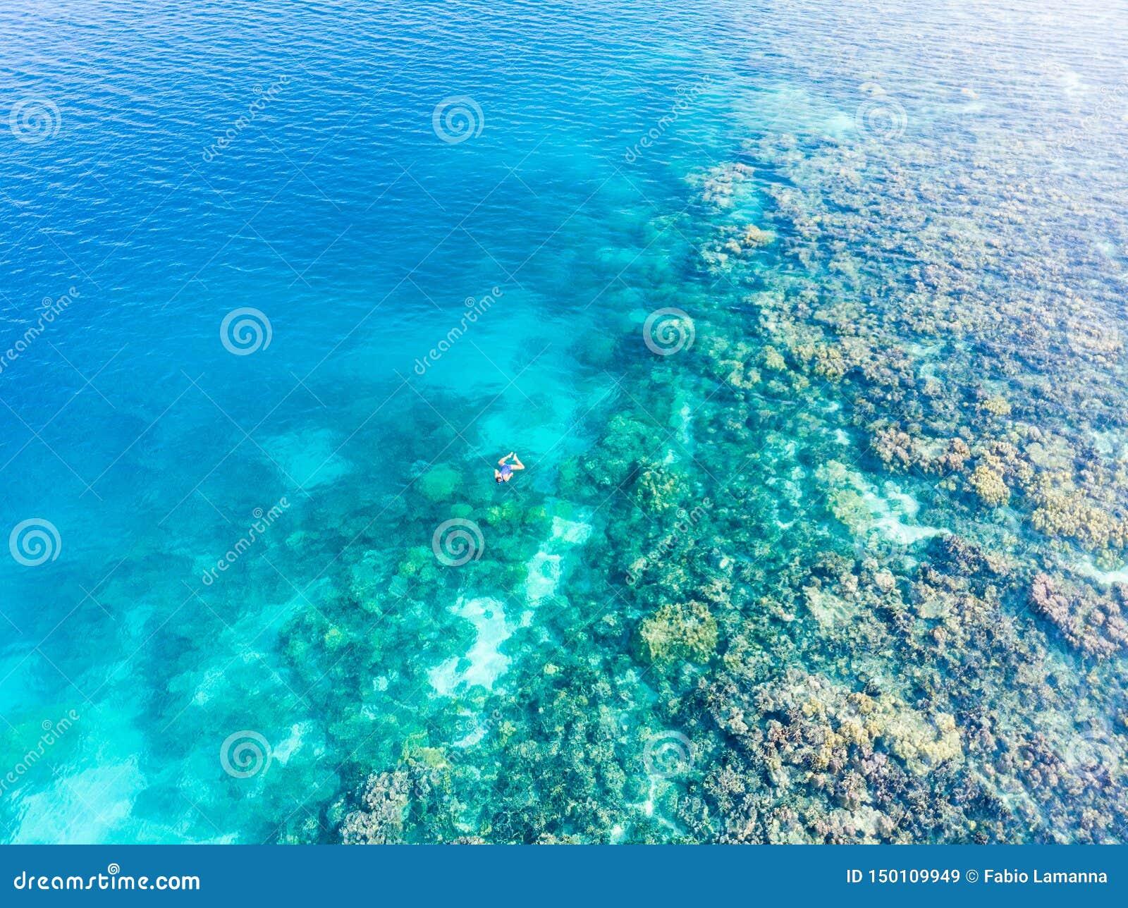 Parte superior a?rea abaixo dos povos que mergulham no mar das cara?bas tropical do recife de corais, ?gua azul de turquesa Ilhas