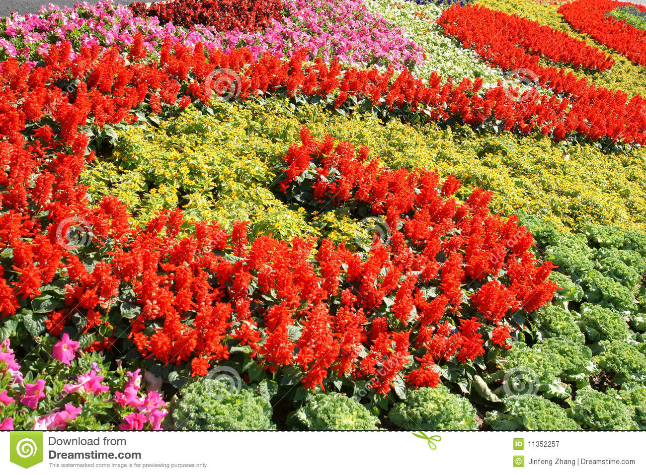 Parterre royalty free stock photography image 11352257 for Parterre 3d