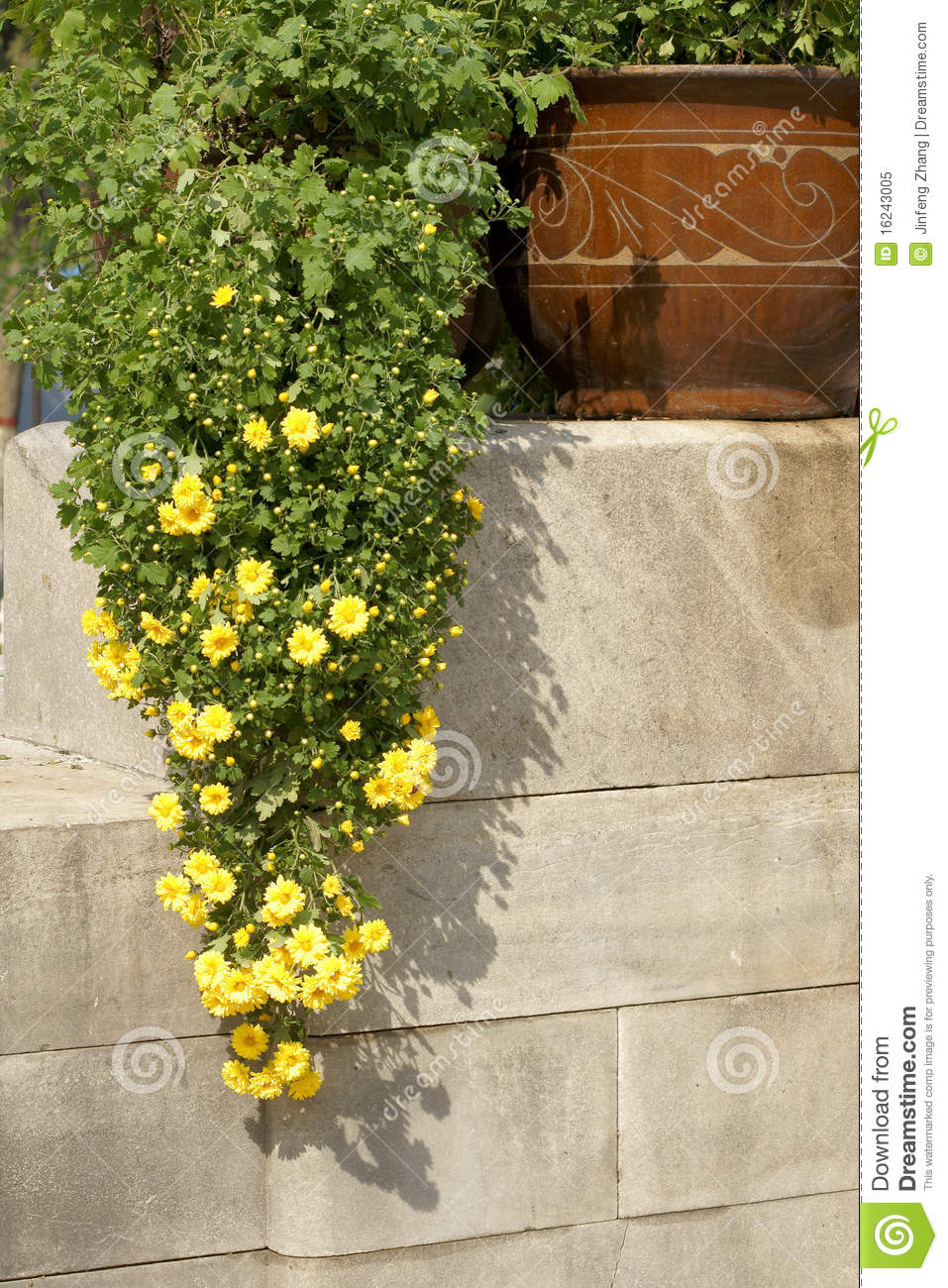Parterre royalty free stock photo image 16243005 for Parterre 3d