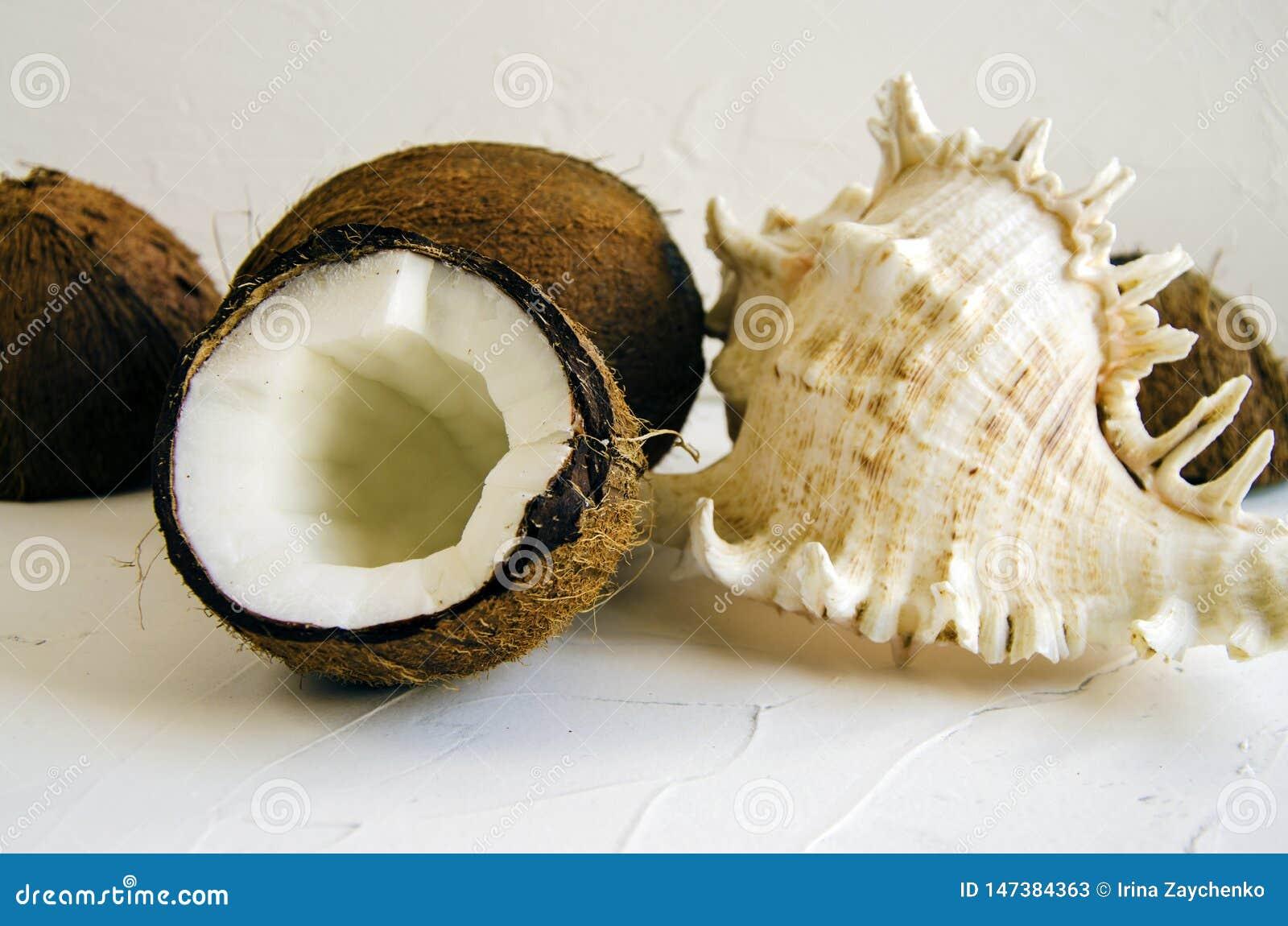 Partes de coco no fundo branco, configura??o lisa, vista superior