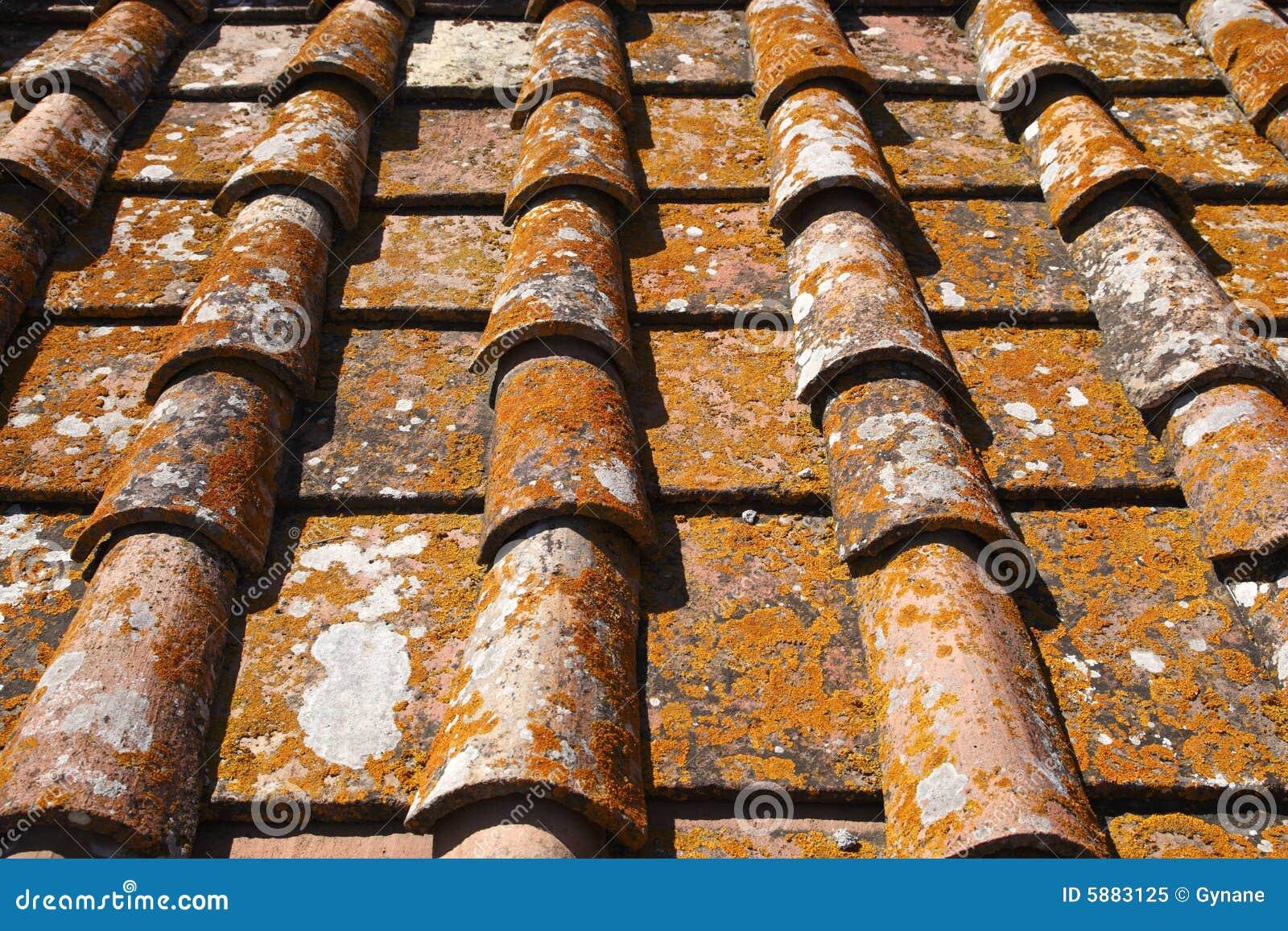 Particolare delle mattonelle di tetto di terracotta immagine stock