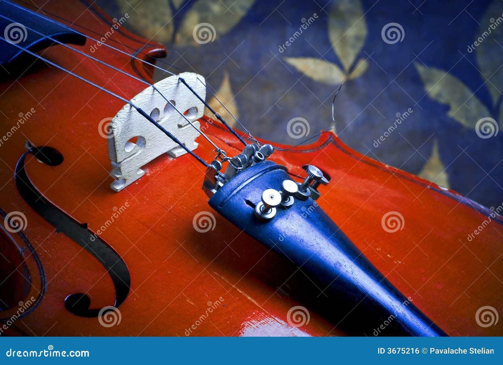 Download Particolari del violino fotografia stock. Immagine di wooden - 3675216