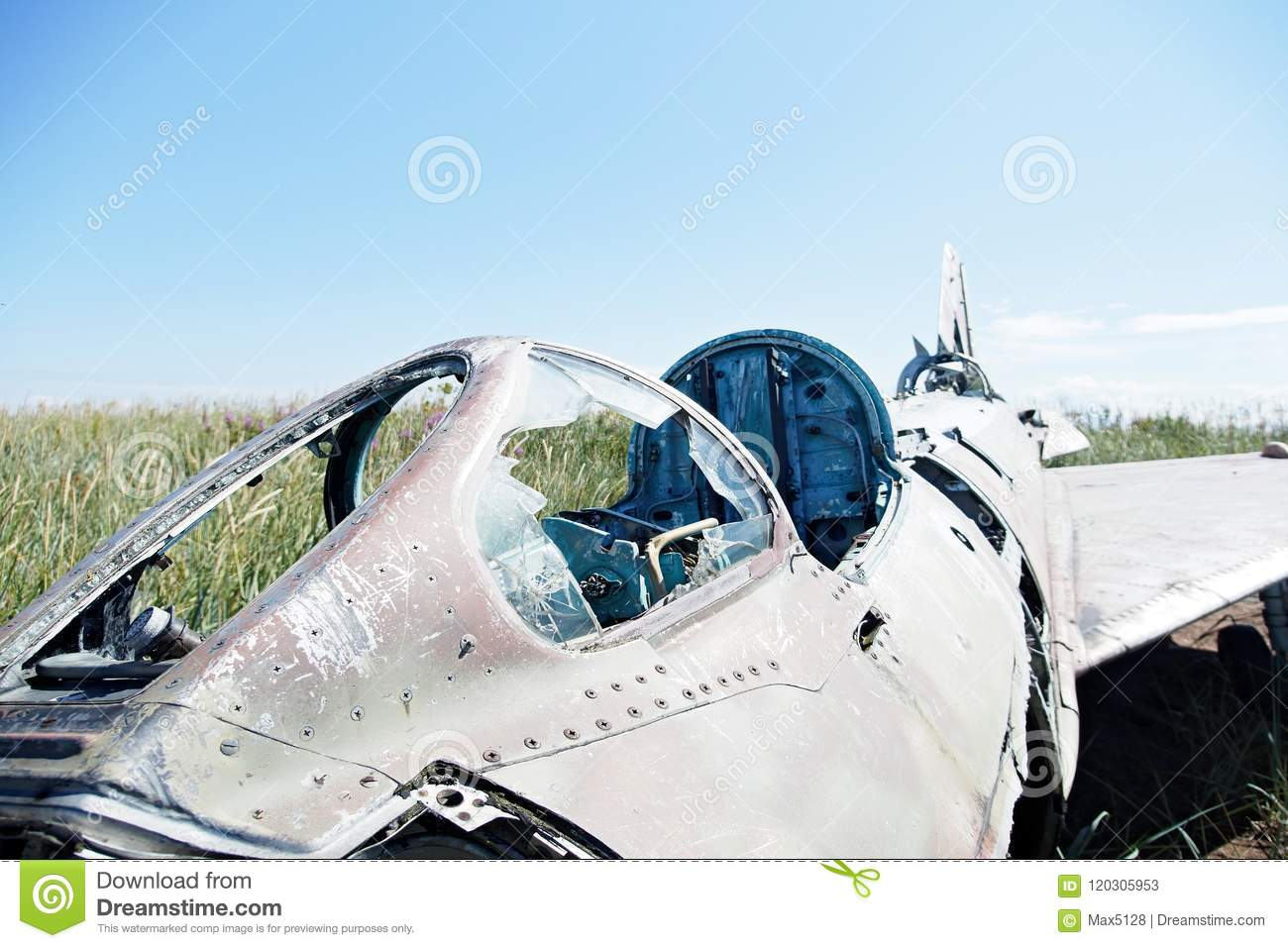 Parts Of Crashed Aircraft On A Natural Background Vegetation An