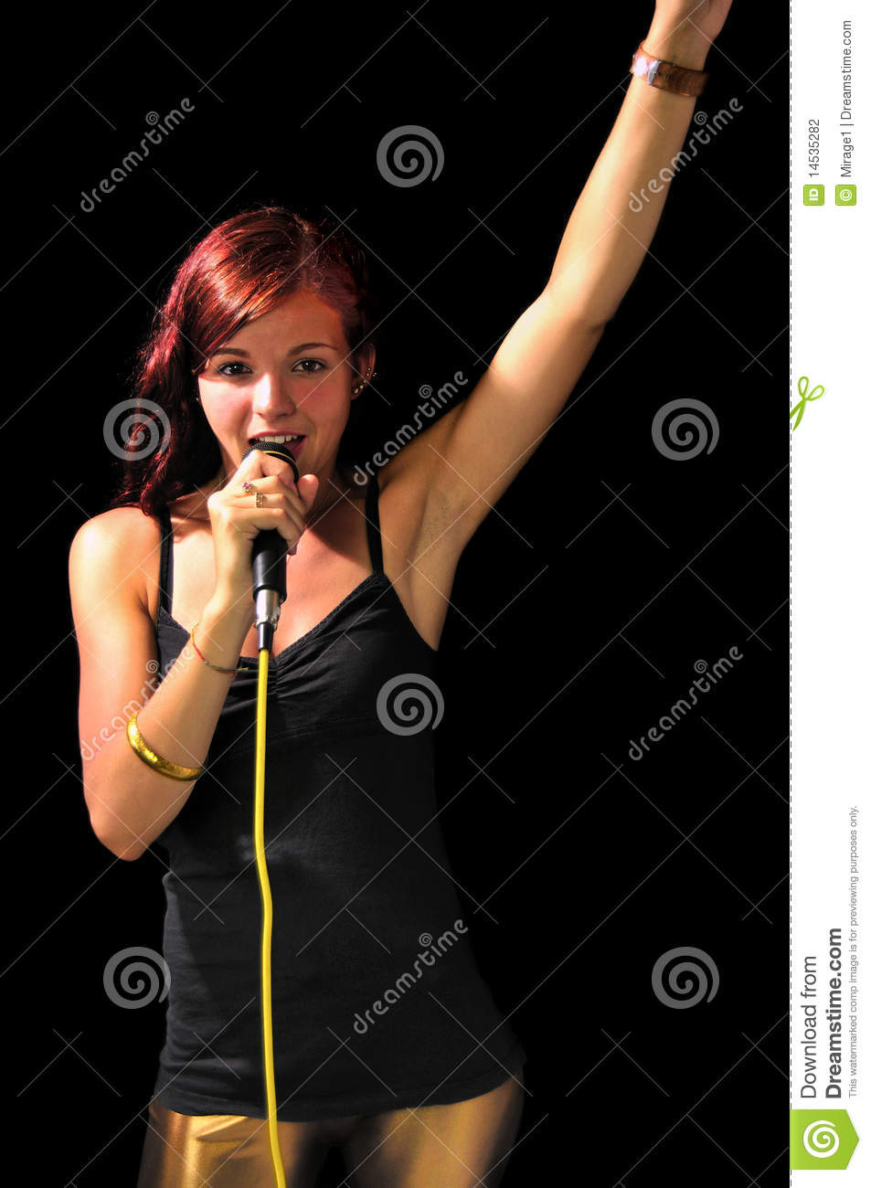 Party Girl On Stage Stock Photography Image 14535282