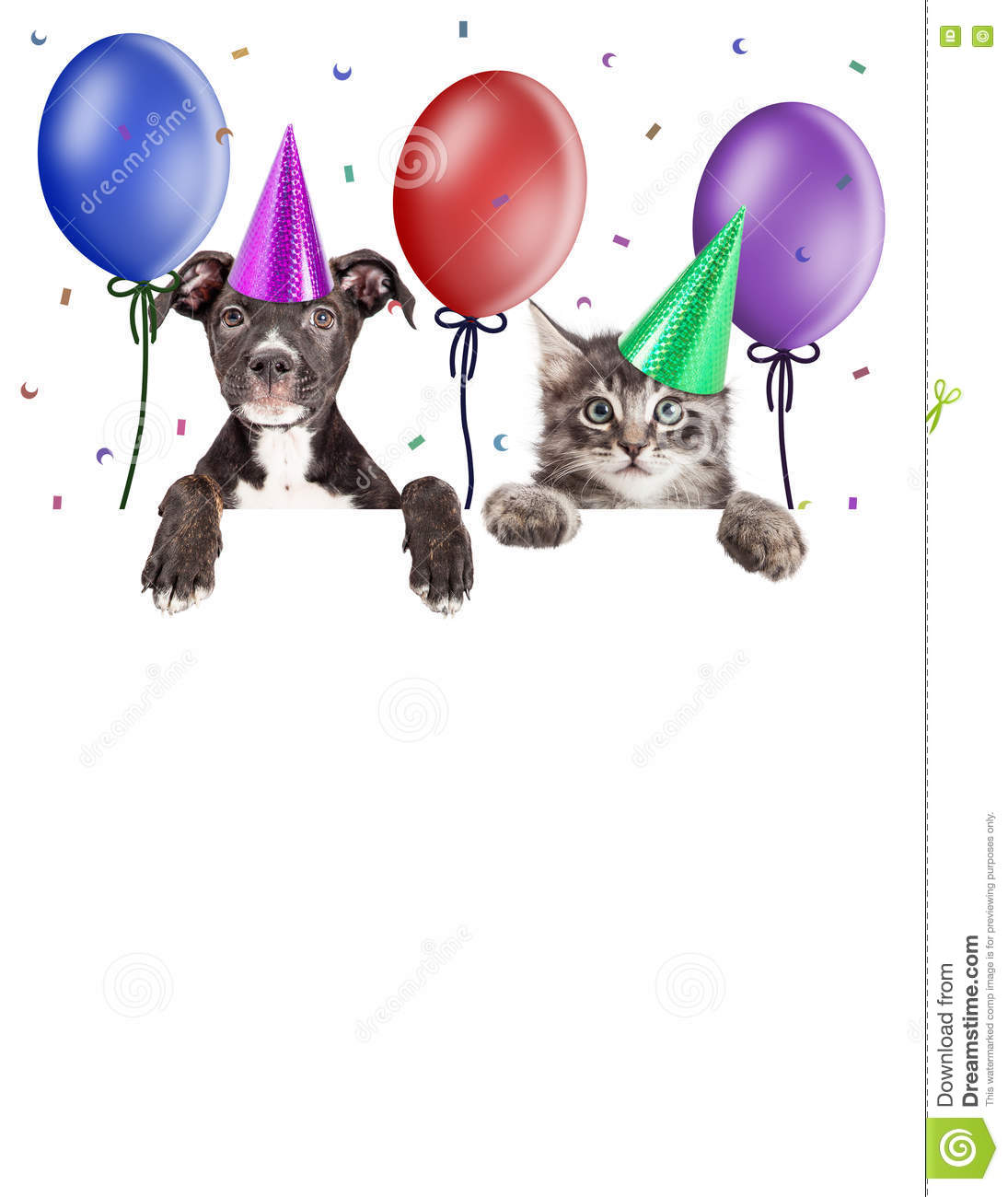Party Kitten And Puppy Hanging Over Blank Banner Stock