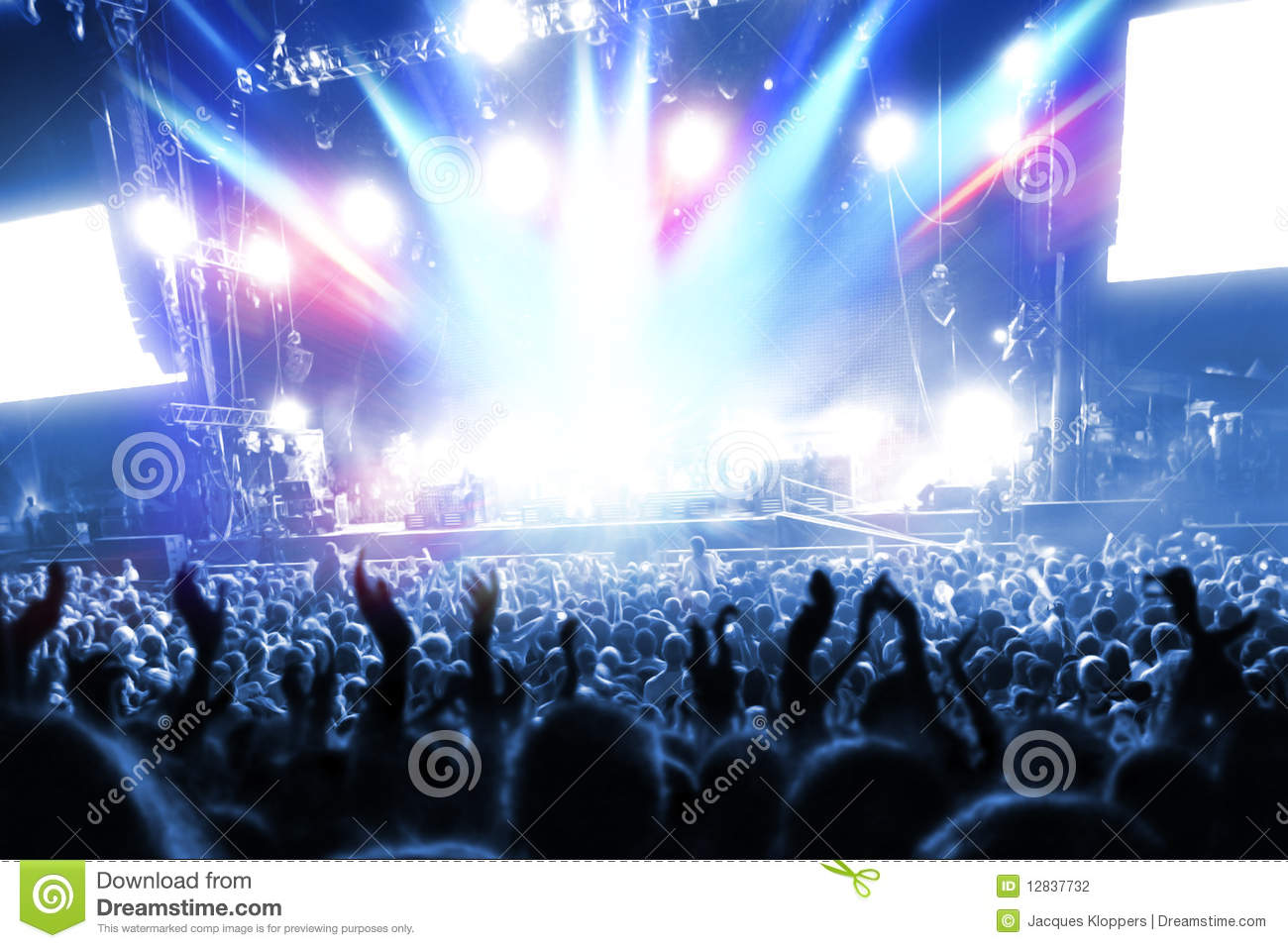 Concert Photography Audience