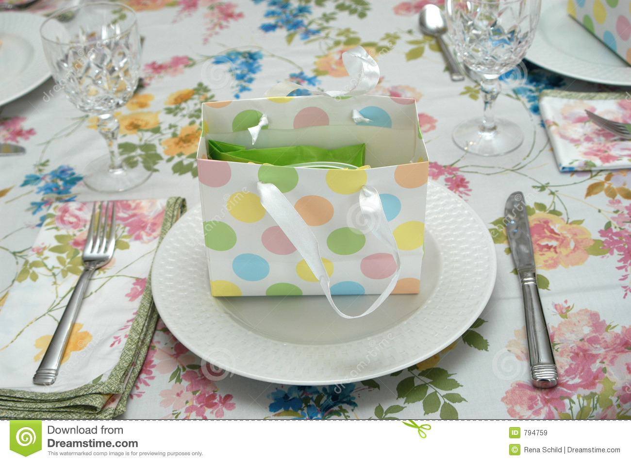 Party Place Setting