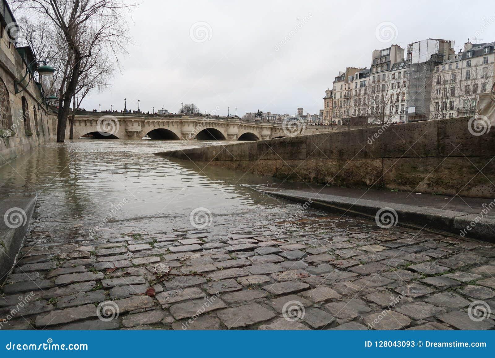 Paryż, zima 2018, powódź na rzecznym wontonie