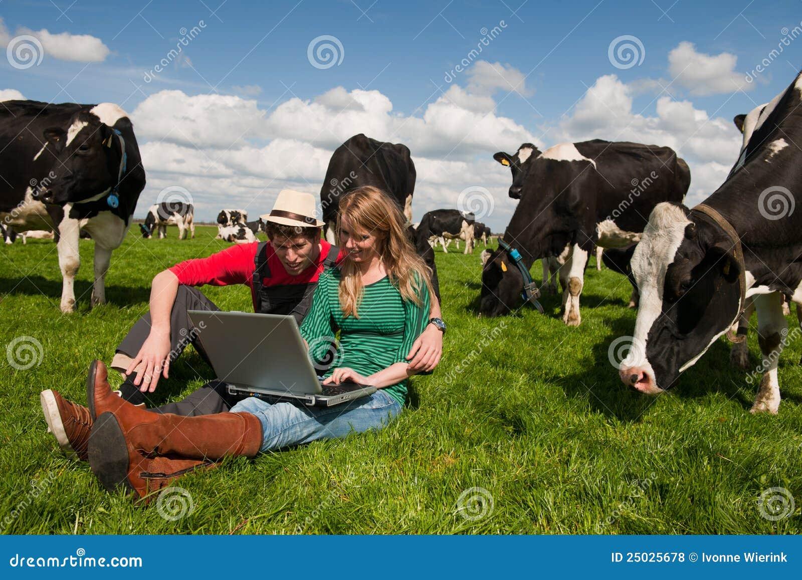 Pary krów rolników śródpolni potomstwa
