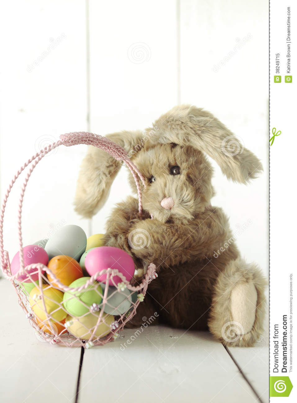 Pasen Bunny Themed Holiday Occasion Image
