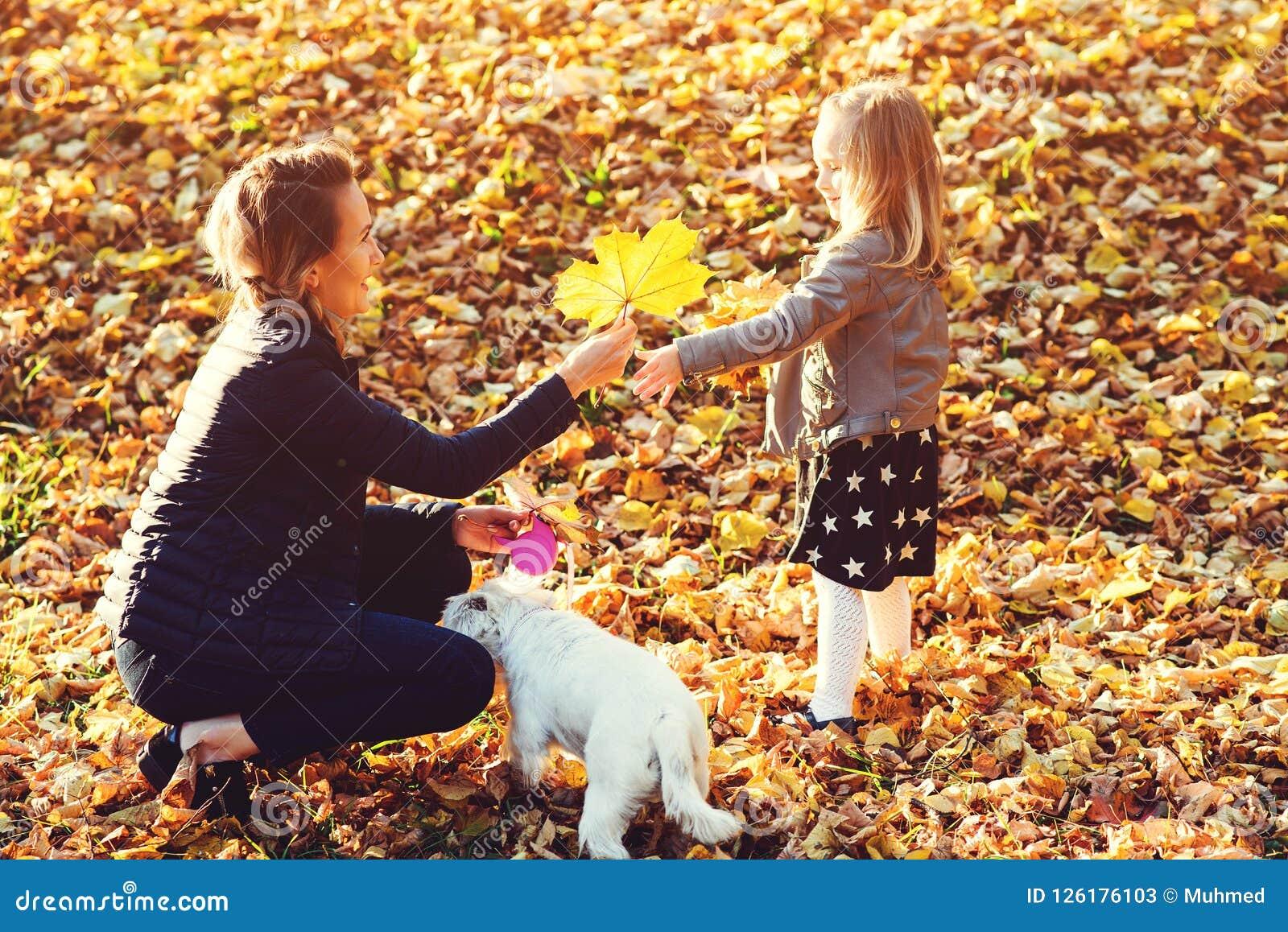 Paseo de la familia en el parque del otoño Familia feliz y su perro que gozan de las hojas caidas en la naturaleza Aire libre de