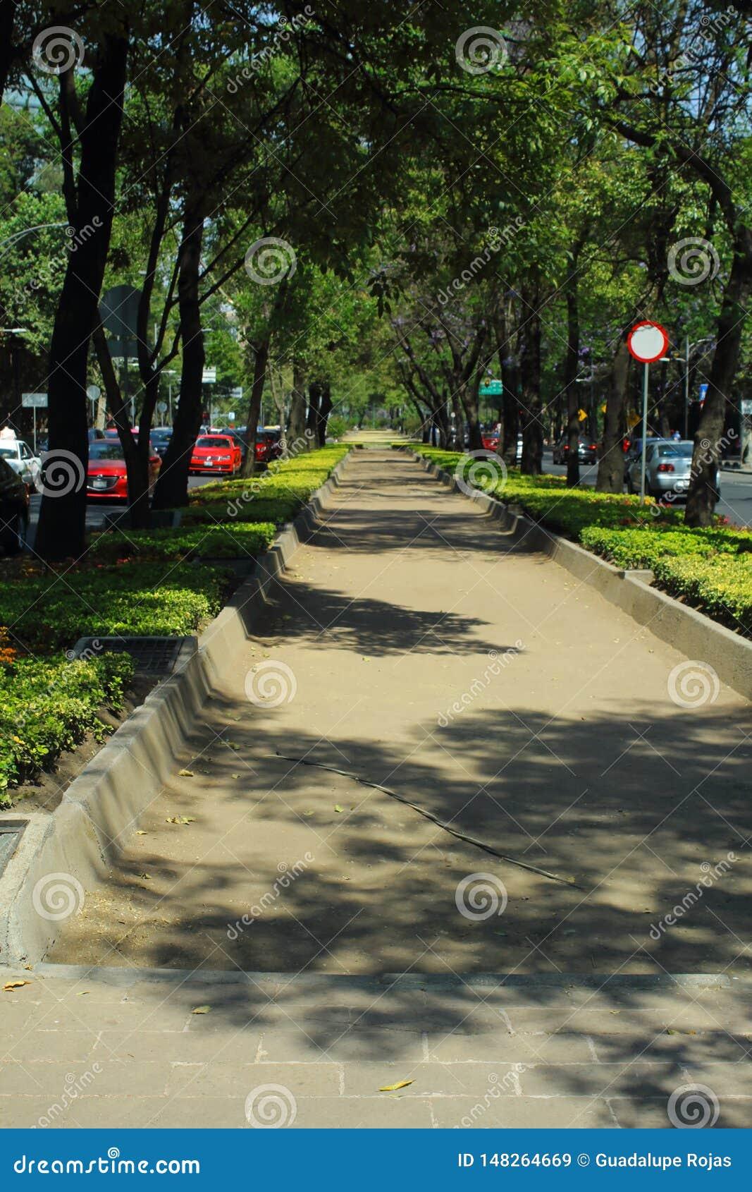Paseo De Los angeles Reforma jest emblematycznym i znacząco aleją w Meksyk