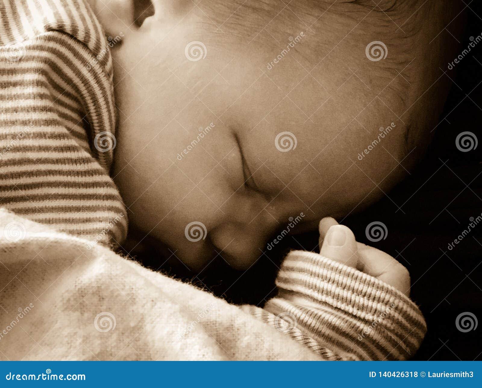 Pasgeboren babyslaap vreedzaam