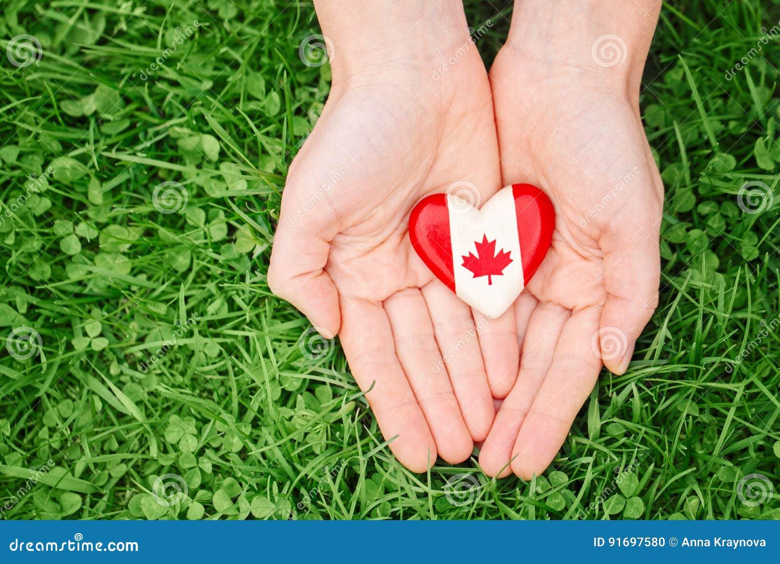 Passa le palme che tengono intorno al distintivo con la foglia di acero canadese bianca rossa della bandiera, sul fondo della nat