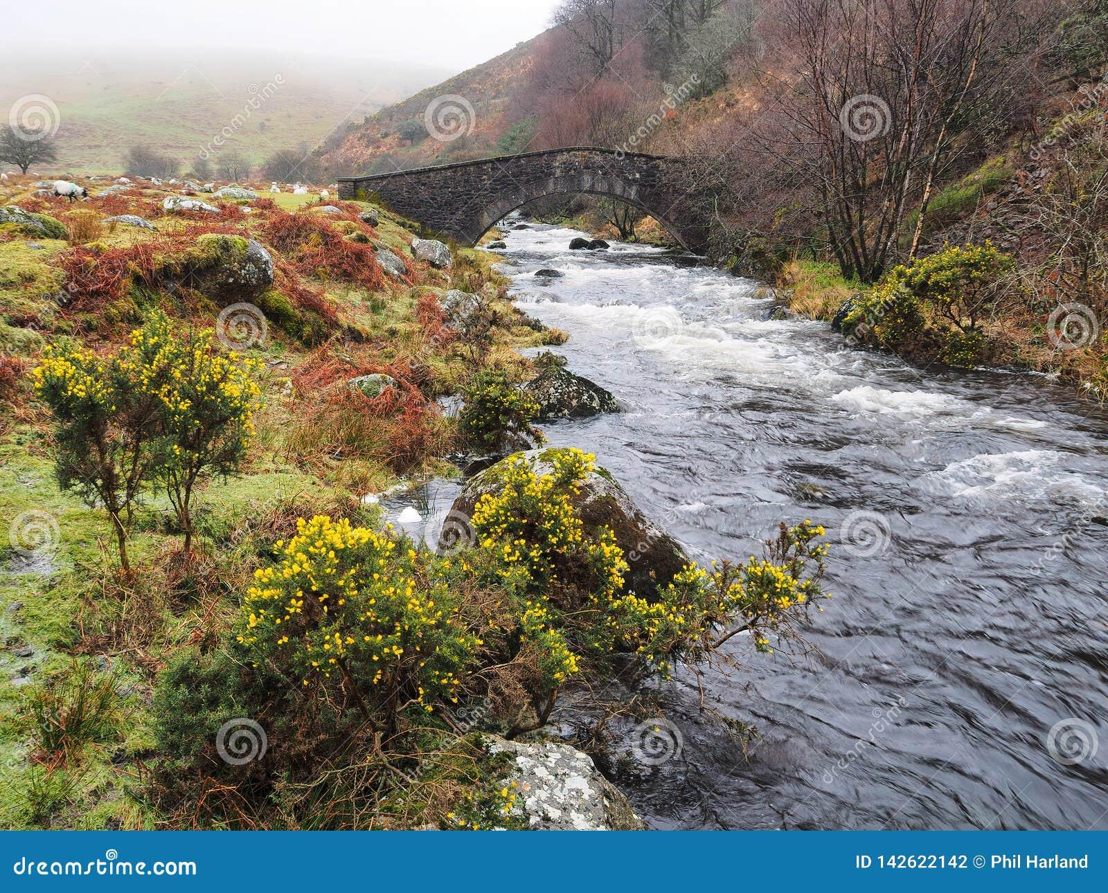 Passadiço de pedra sobre o rio ocidental de Okement, parque nacional do arco de Dartmoor, Devon, Reino Unido
