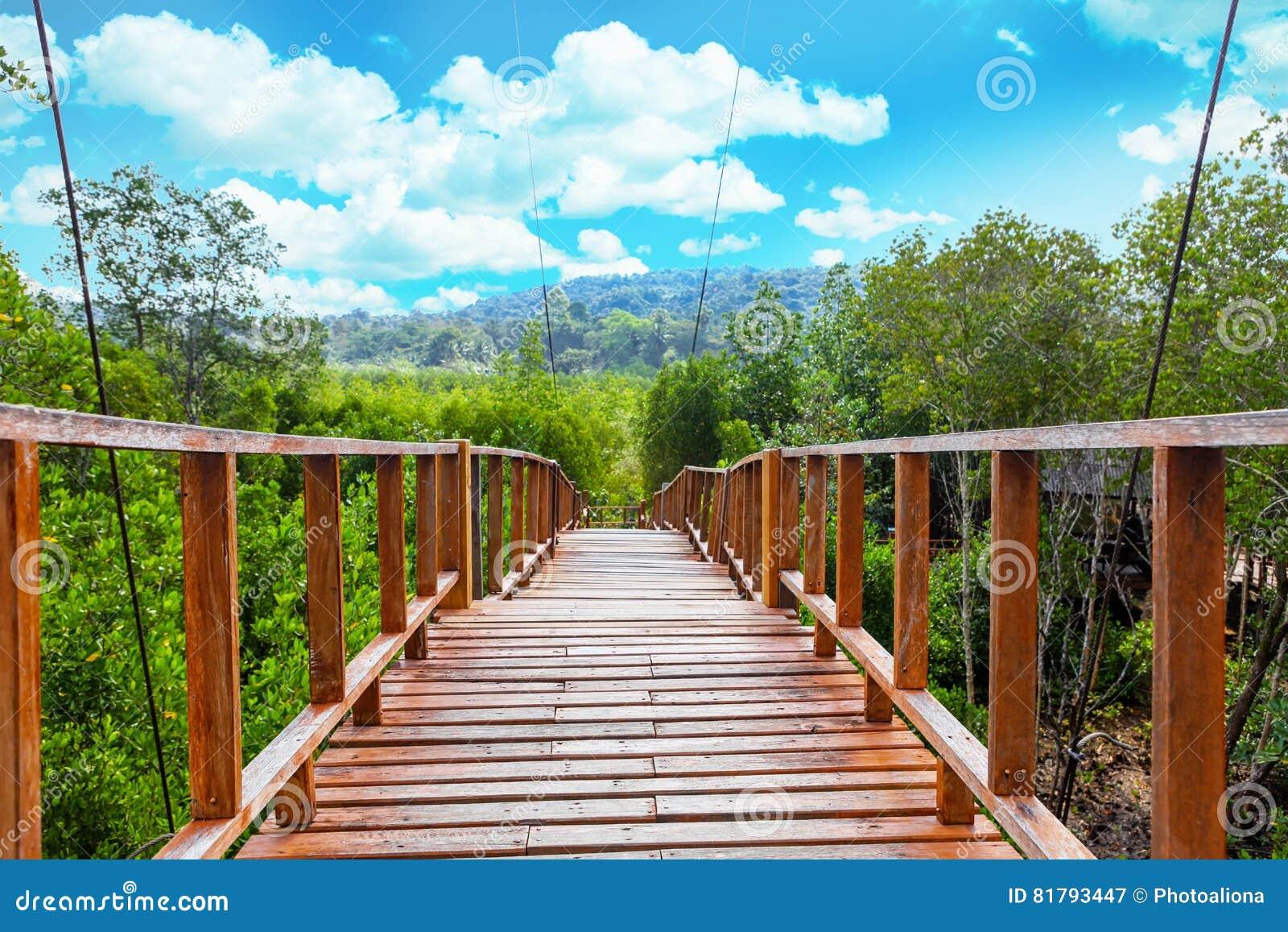 Passage couvert de Forest Wooden de palétuvier de baie de Thung Kha Chumphon, Thaïlande