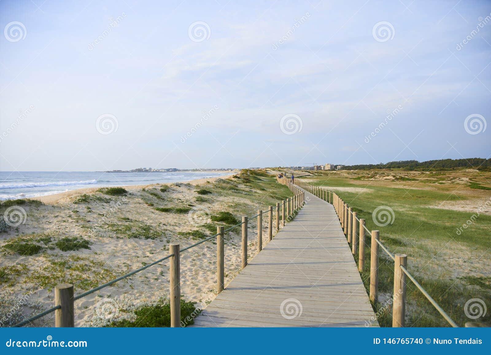 Passage couvert en bois au-dessus de la dune