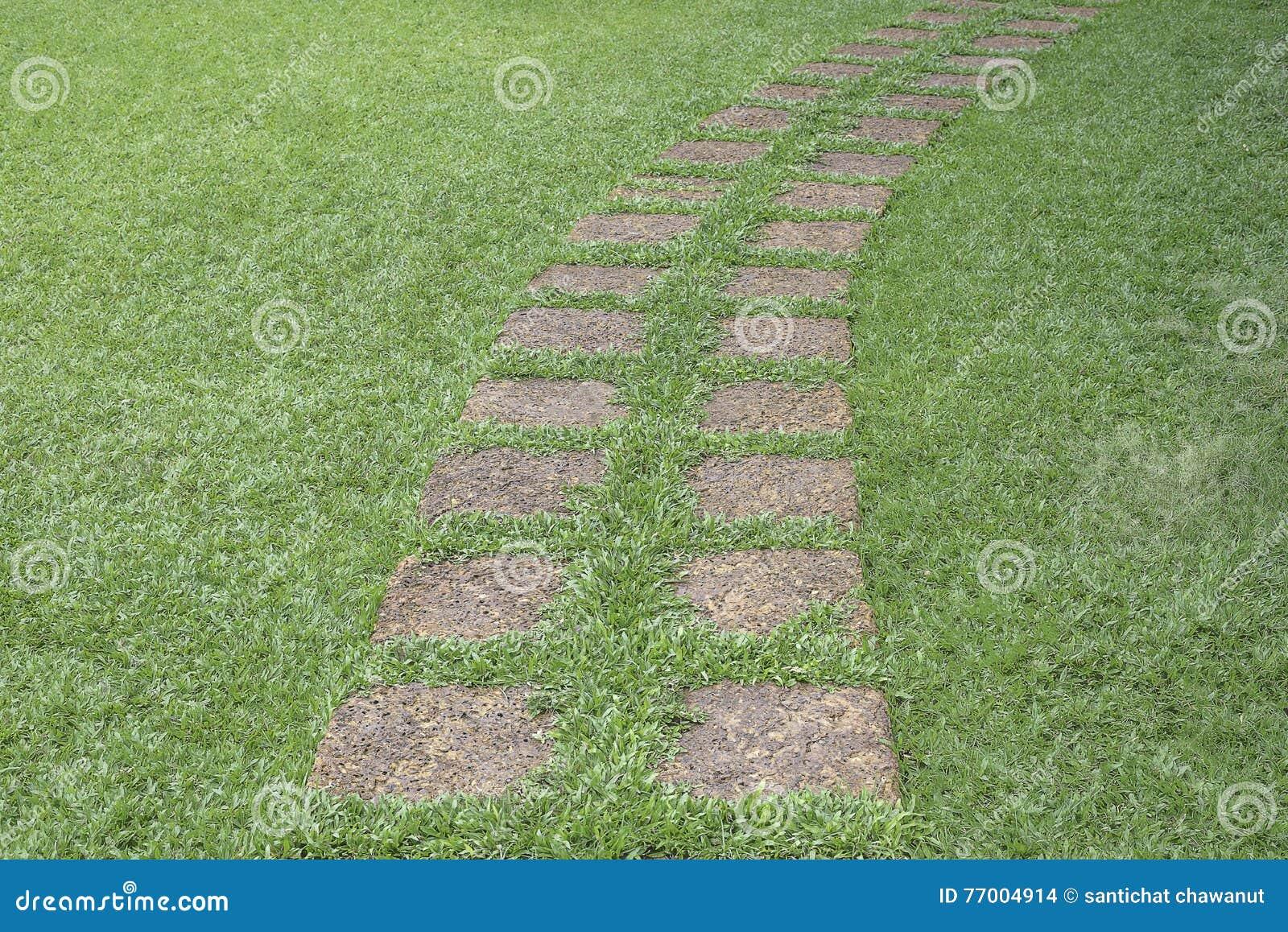 passage couvert en pierre dans le jardin avec l 39 herbe verte photo stock image 77004914. Black Bedroom Furniture Sets. Home Design Ideas
