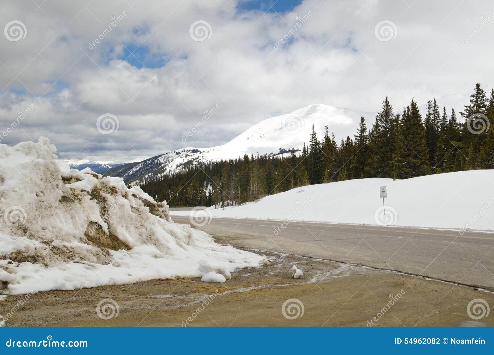 Passaggio del Hoosier - strada di stato di Snowy in Colorado