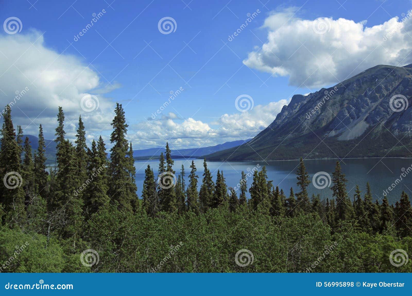 Passaggio & itinerario bianchi del Yukon