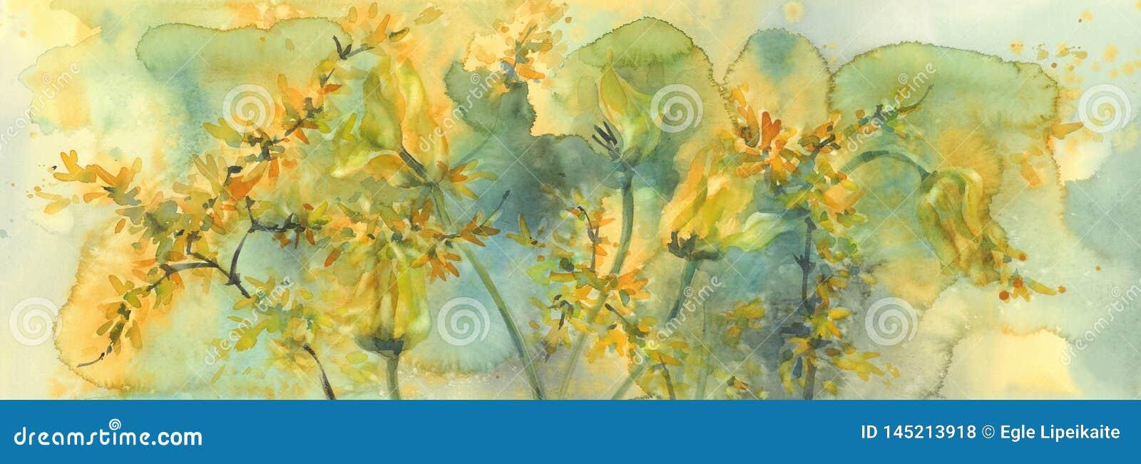 Passar ligeiramente o fundo amarelo da aquarela das tulipas, flores de morte