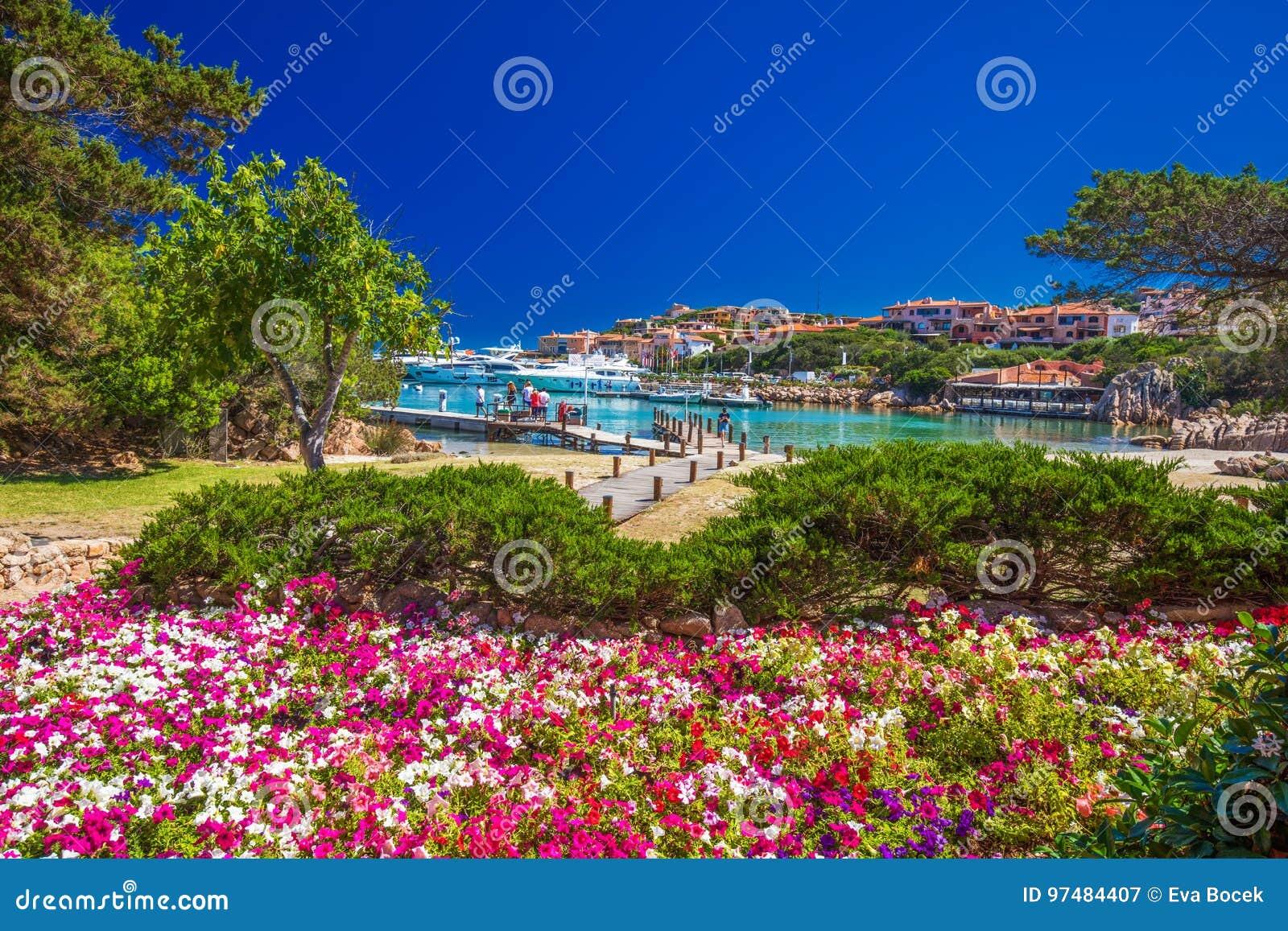Passeggiata della linea costiera con i pini ed acqua del tourquise chiara a Oporto Cervo, Costa Smeralda, Sardegna, Italia