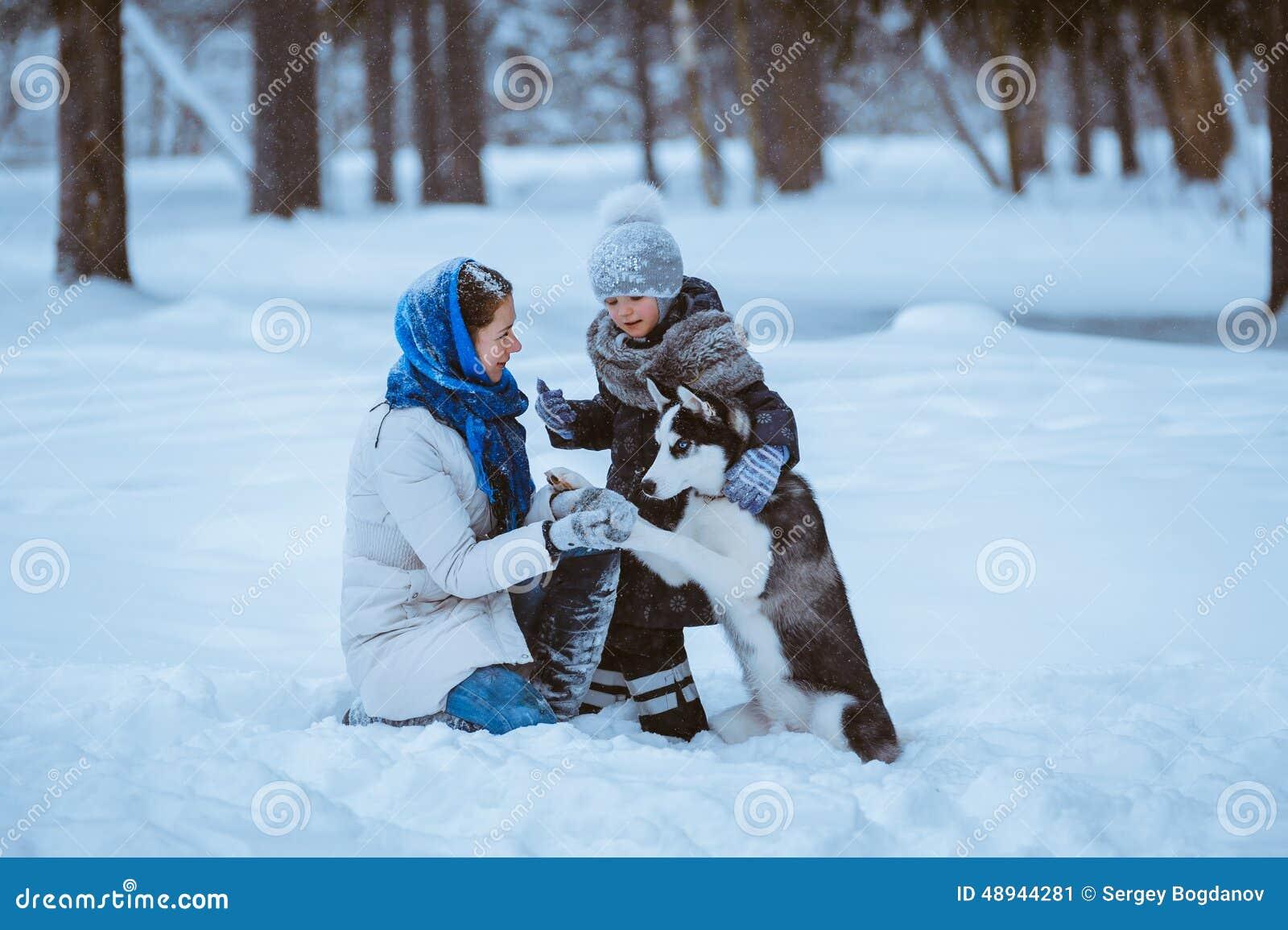 Passeggiata di inverno con il husky