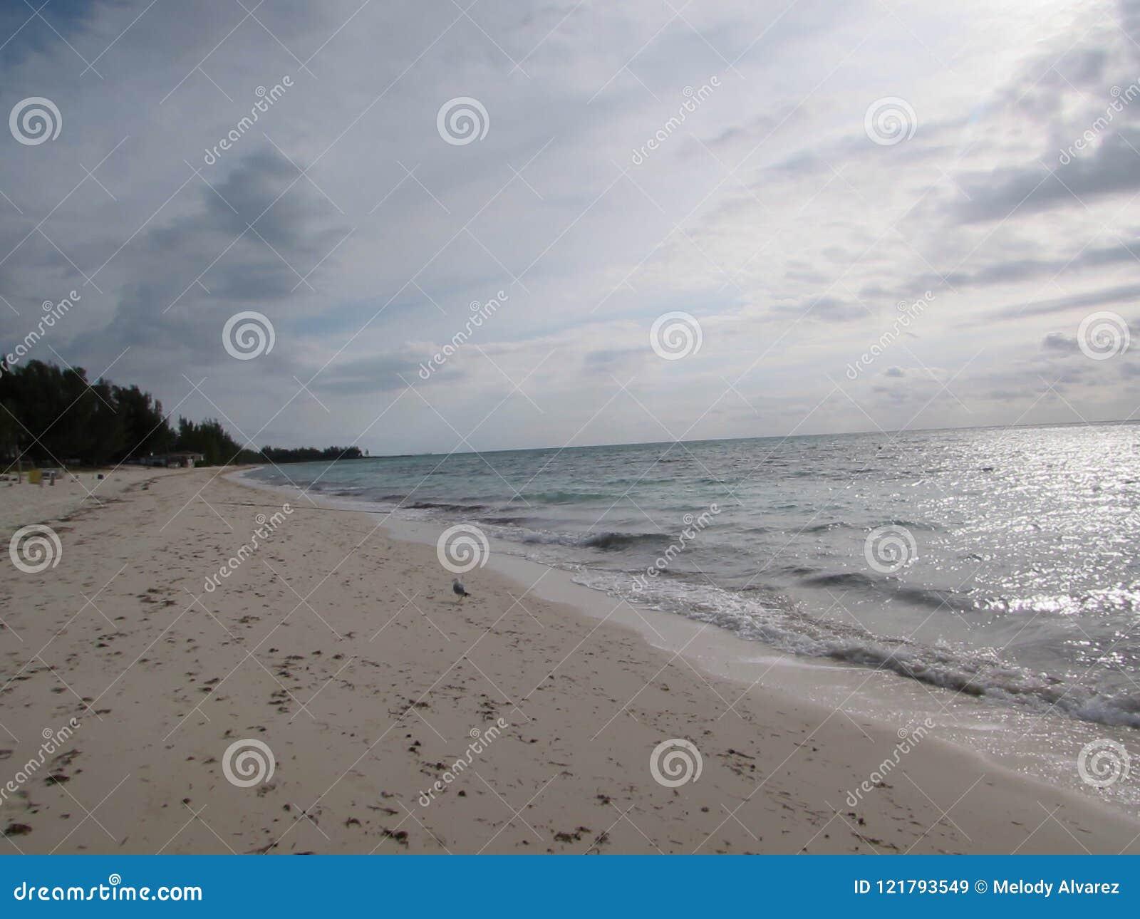 Passeggiata di mattina alla spiaggia