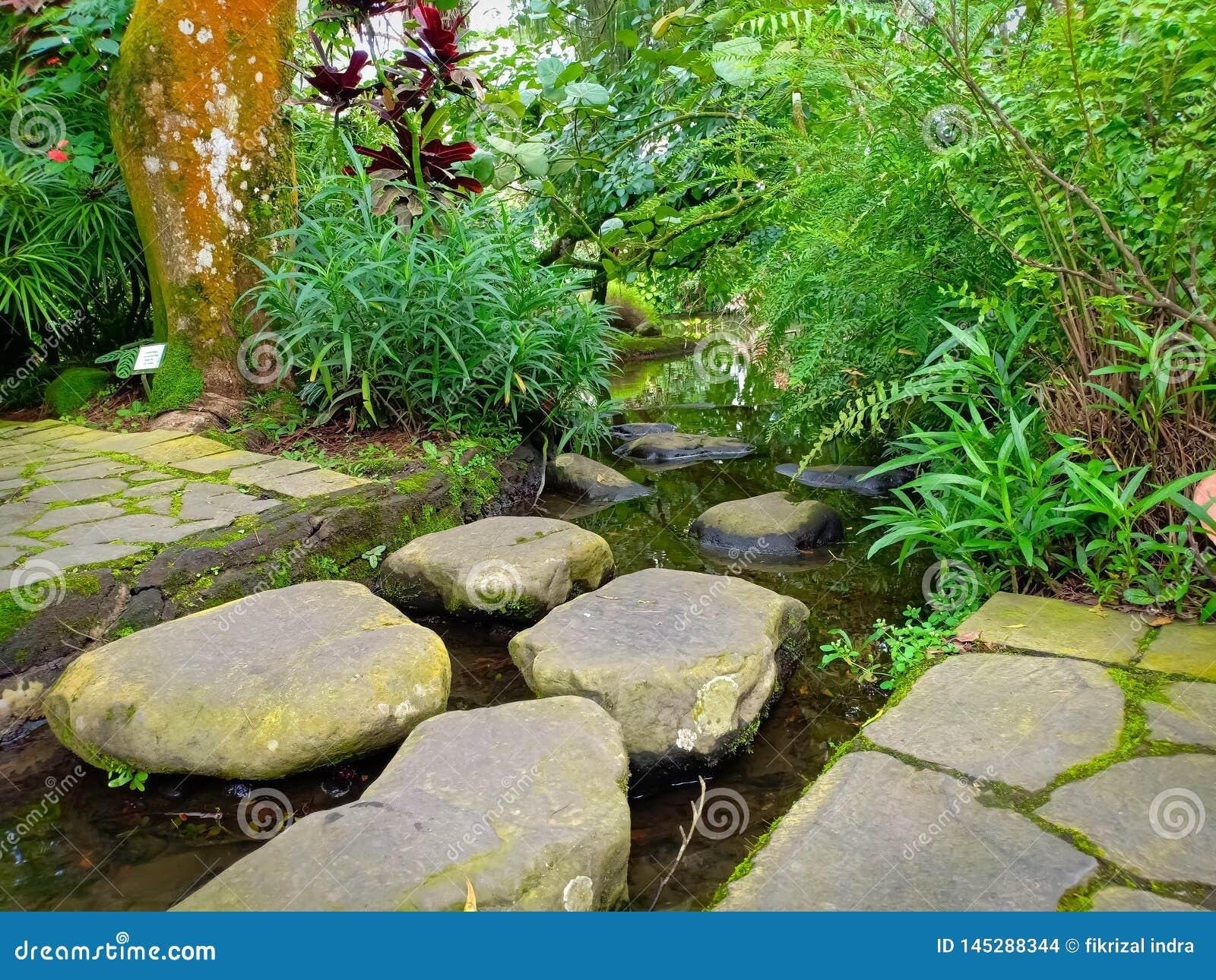 Passeggiata di pietra nel giardino