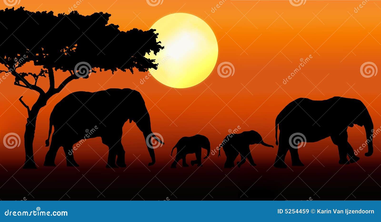 Passeio da família do elefante