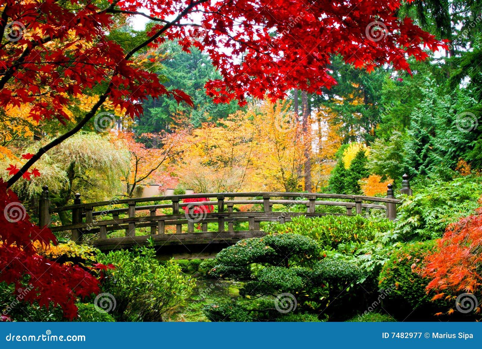 Passerelle dans un jardin