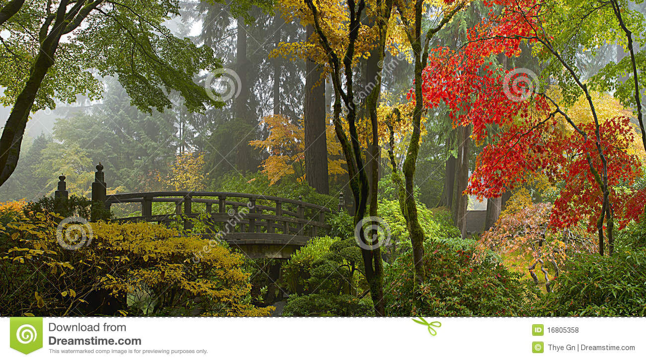 passerelle en bois au jardin japonais en automne photo stock image 16805358. Black Bedroom Furniture Sets. Home Design Ideas
