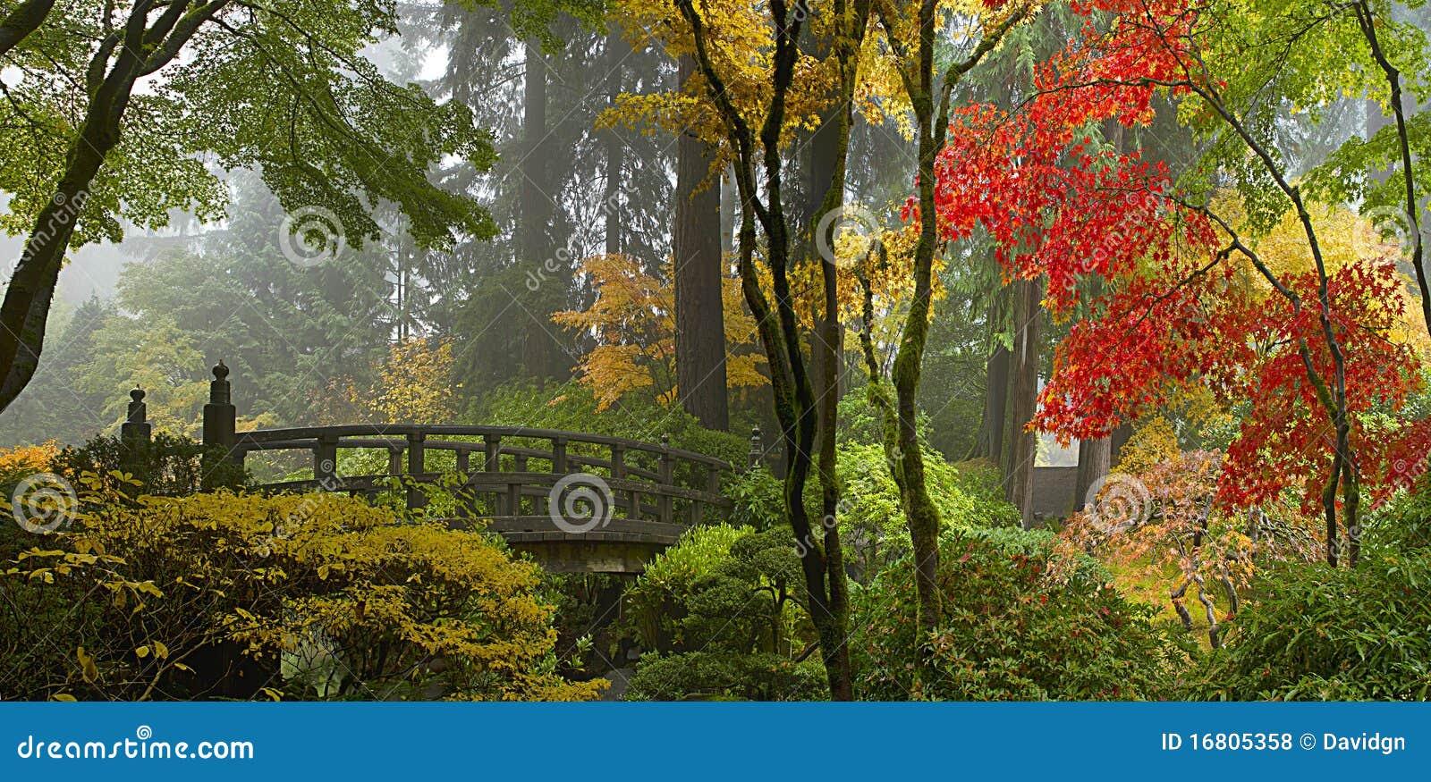 passerelle en bois au jardin japonais en automne photos libres de droits image 16805358. Black Bedroom Furniture Sets. Home Design Ideas