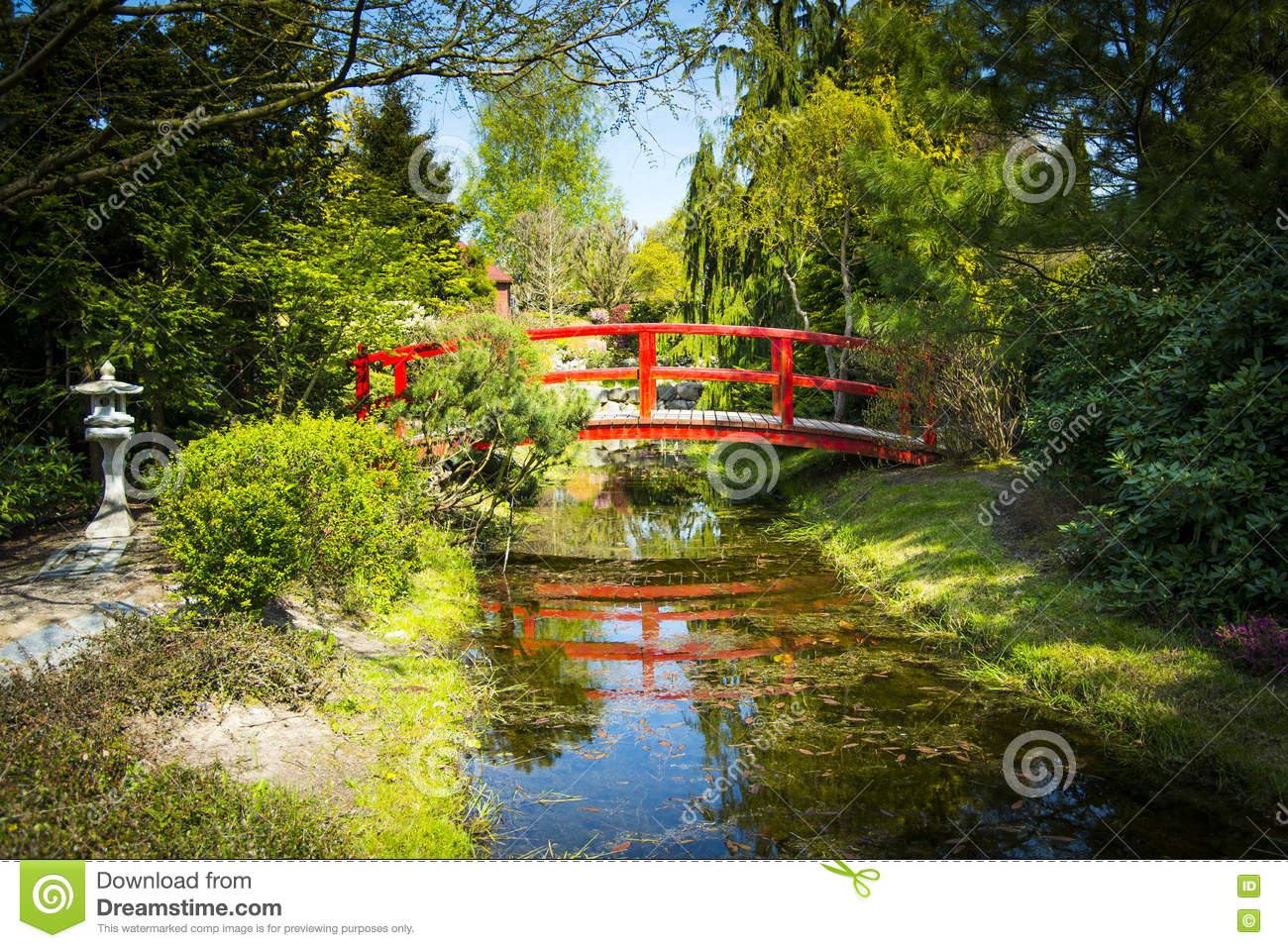 passerelle en bois dans le jardin japonais photo stock image 71561198. Black Bedroom Furniture Sets. Home Design Ideas