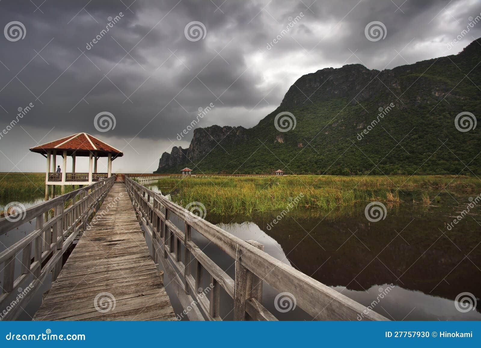 Passerelle en bois dans le lac de lotus au stationnement national de yod de ROI de Sam de khao