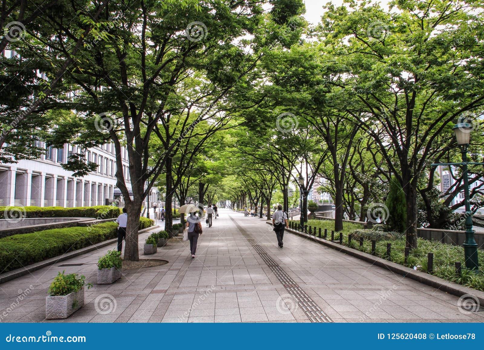 Passers langs in de straten van Osaka en parken tijdens een hete de zomerdag, Centraal Osaka, Nakanoshima-Eiland, Japan,