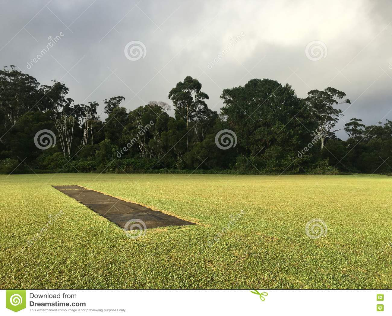 Passo australiano del cricket
