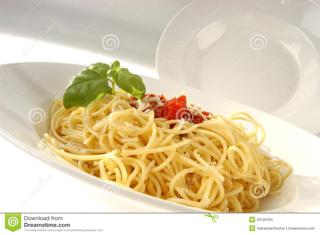 White Pasta dishes - spaghetti with tomato sauce and basil.