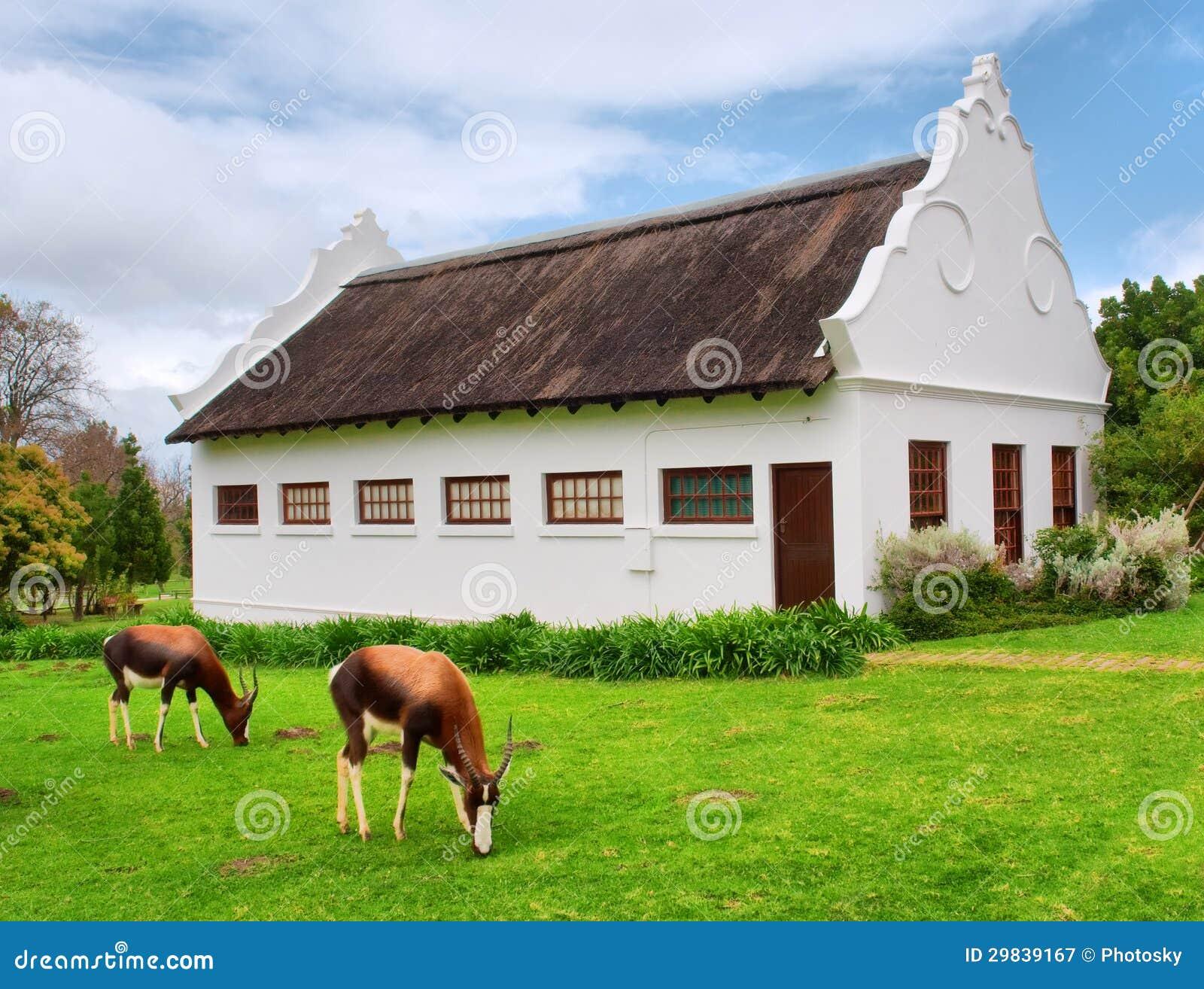Pastando antílopes na frente da casa tradicional do holandês sul-africano