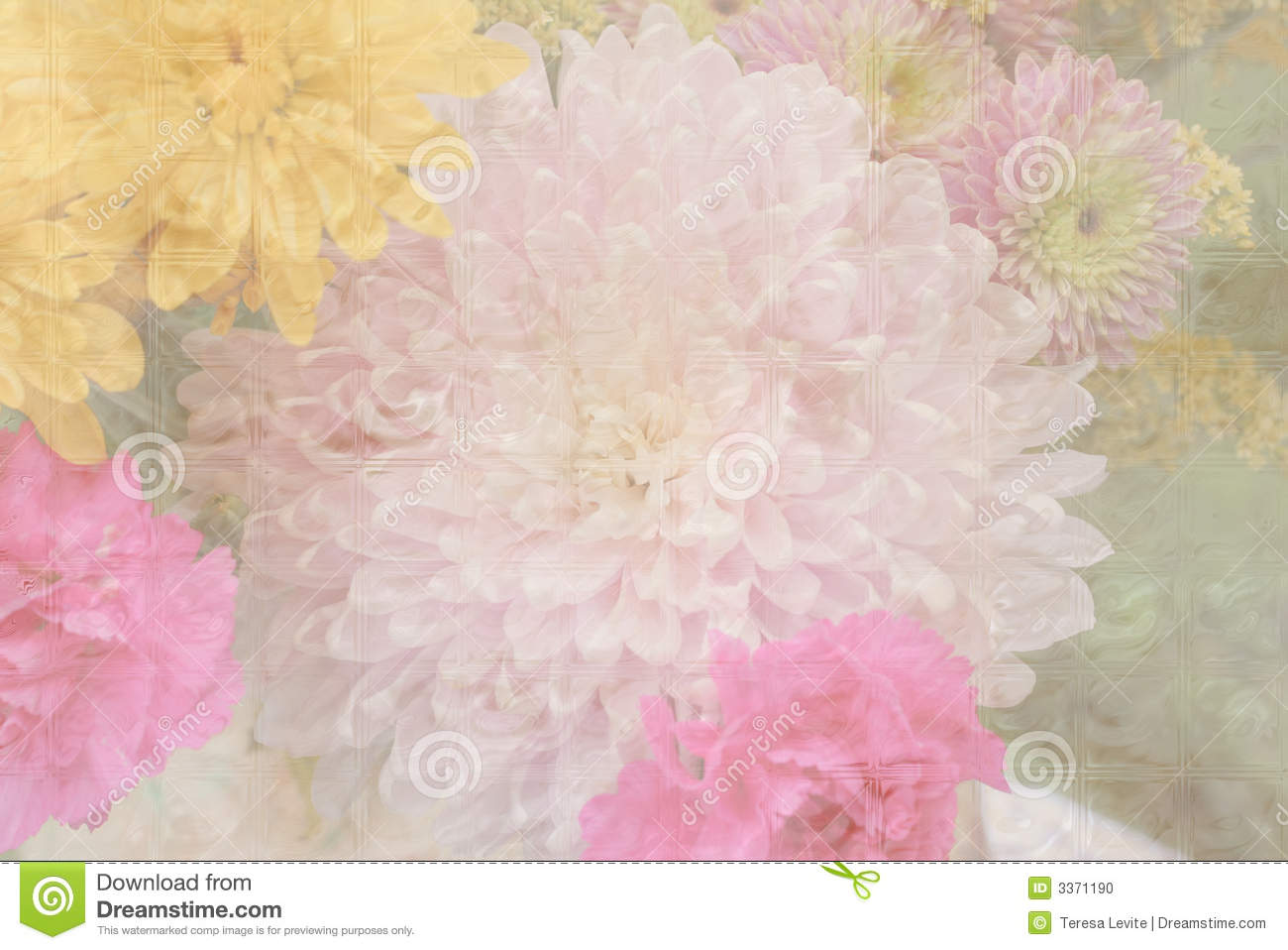 Pastel Flower Background Stock Image