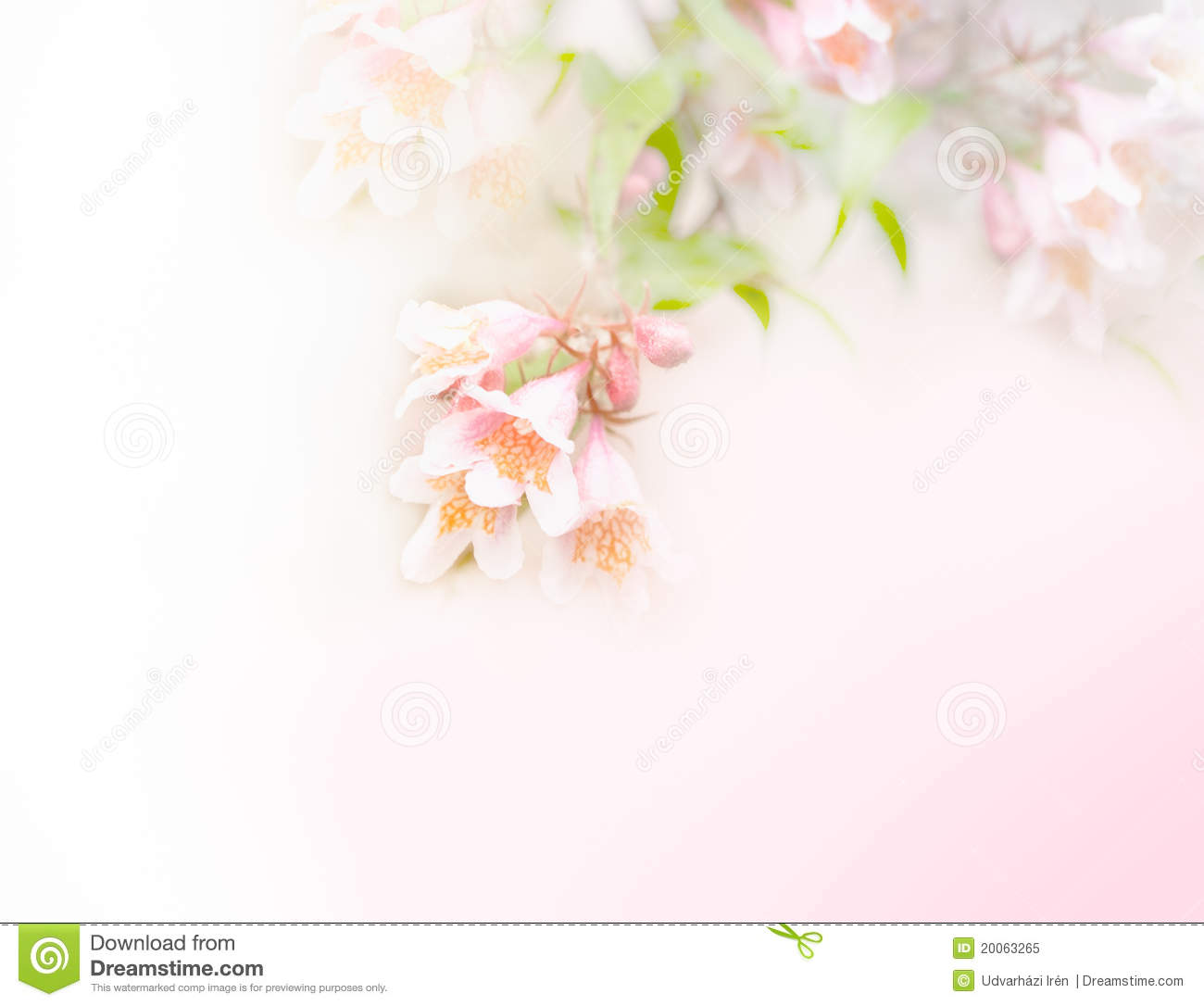 Pastel Flowers Royalty Free Stock Image