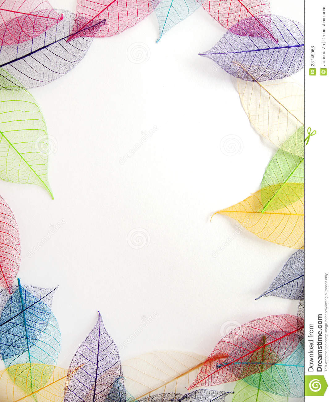 pastel leaves frame on white background royalty free stock photos image 23749068 Pastel Spring Flowers Border Pastel Background