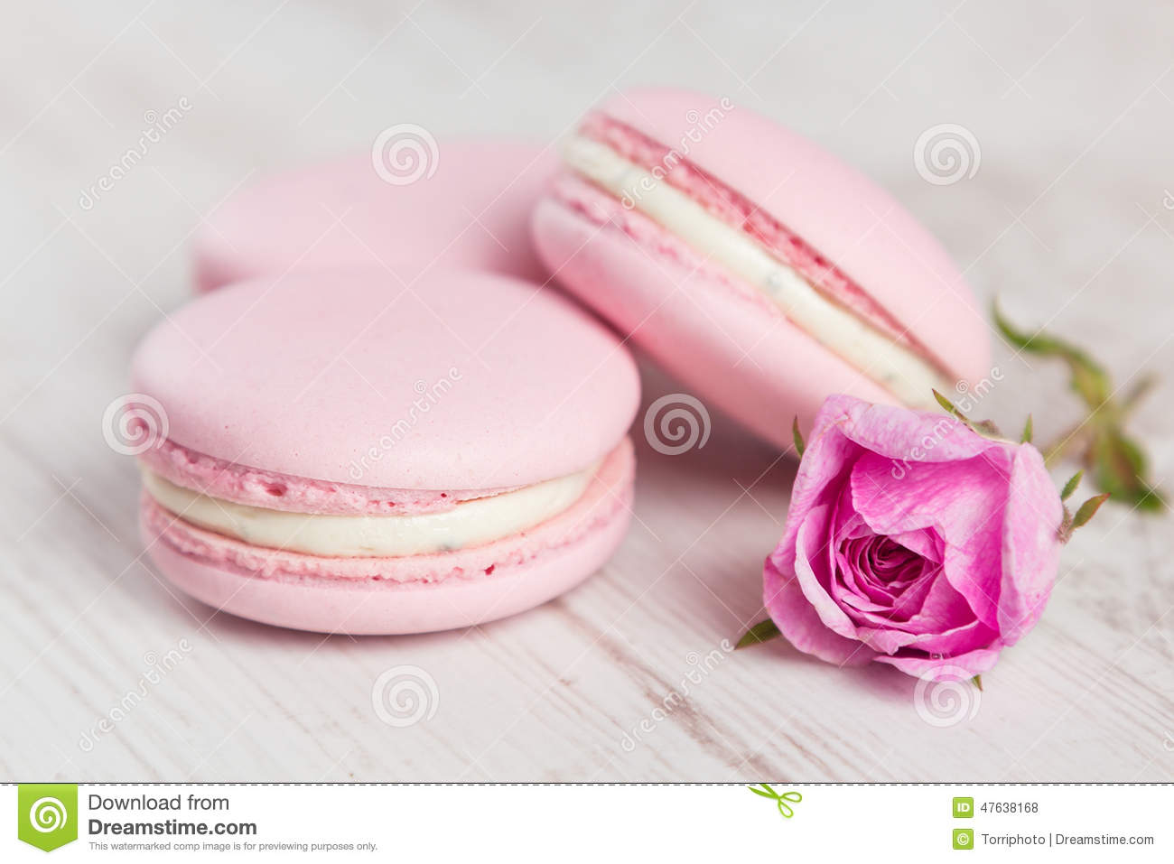 pastel pink macaroons with rose pastel colored stock photo image 47638168. Black Bedroom Furniture Sets. Home Design Ideas