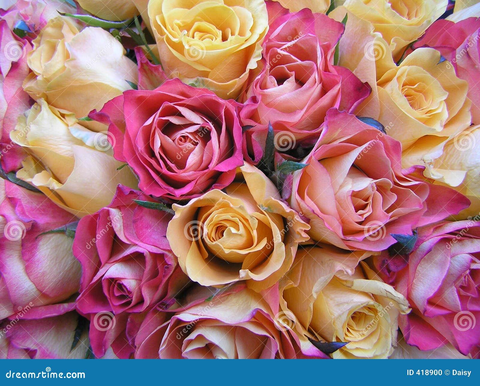pastel wedding bouquet stock photo image 418900. Black Bedroom Furniture Sets. Home Design Ideas