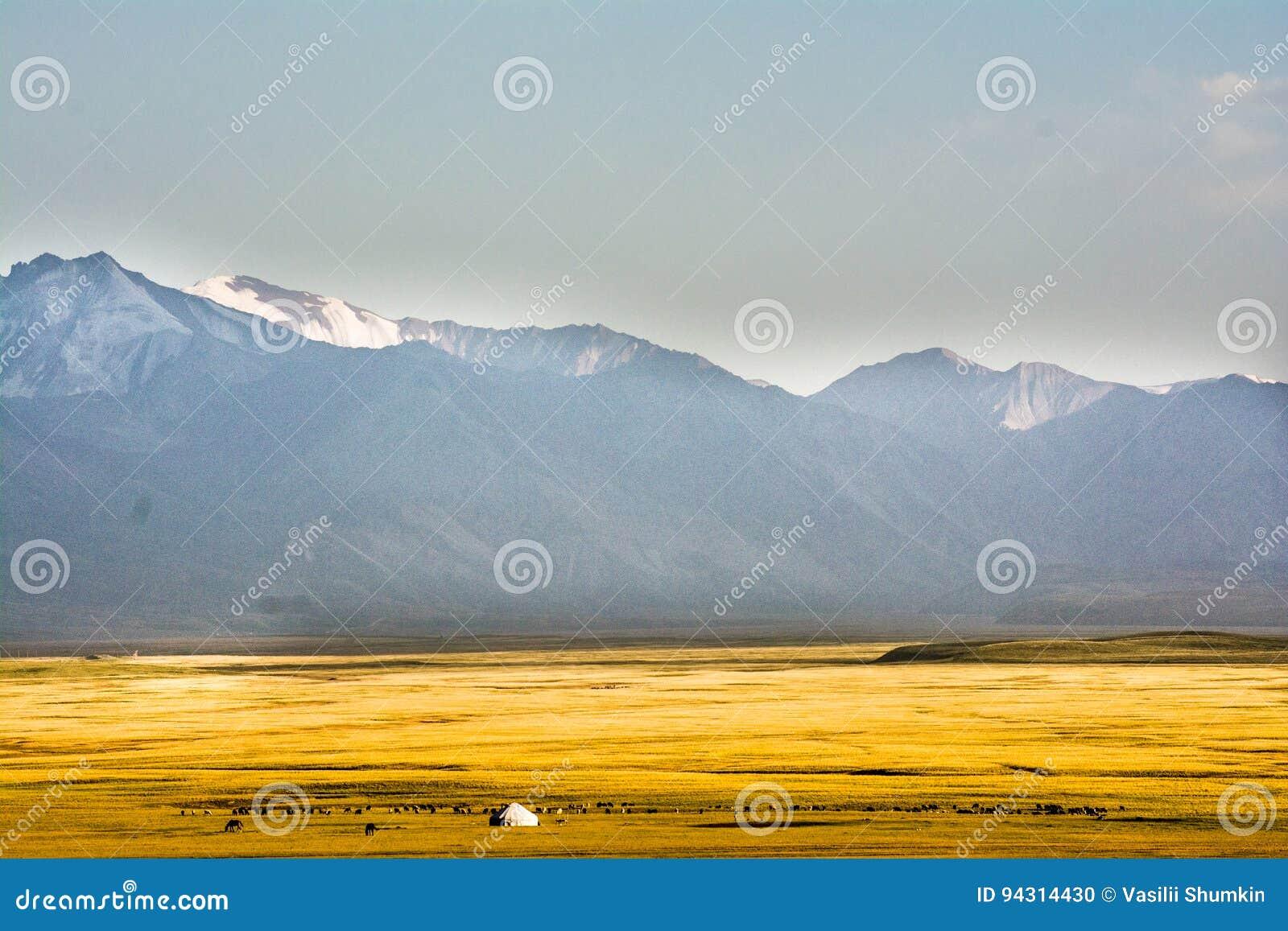 Pasto de la montaña