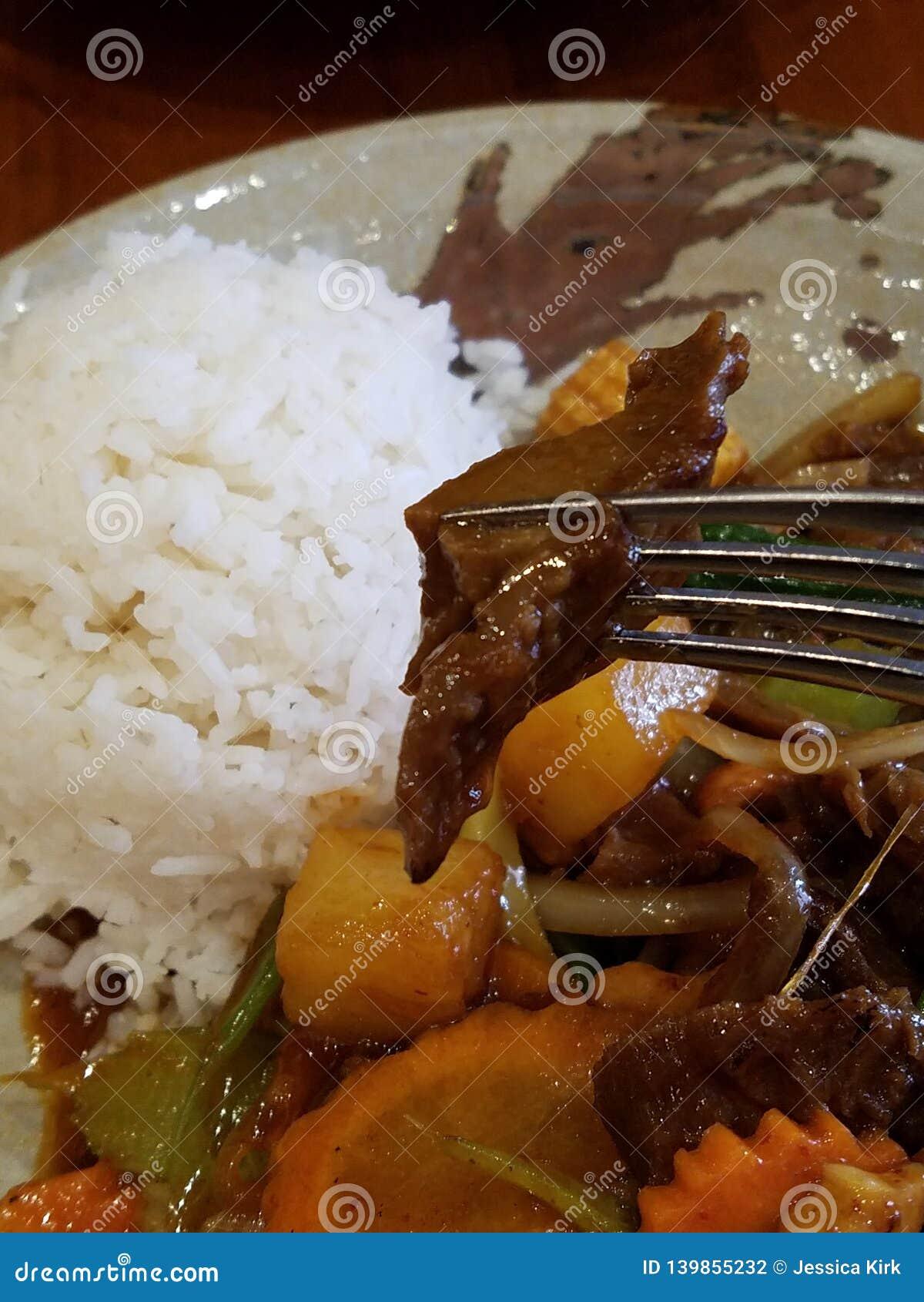 Pasto falso tailandese della proteina dell anatra